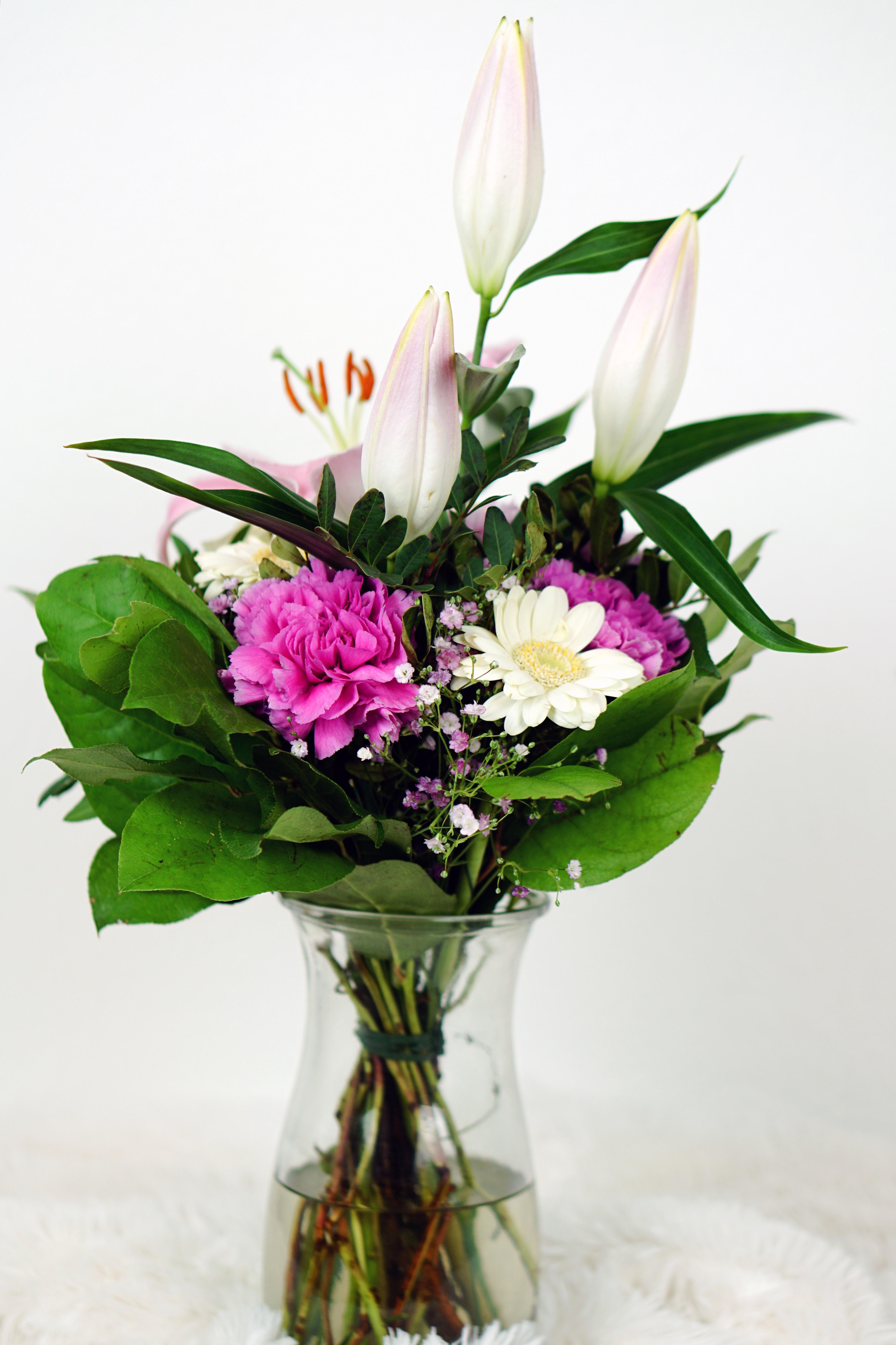 fotos gratis naturaleza florecer celebracion amor regalo decoracin verde vistoso rosado flora da de la boda flores art festival alegra