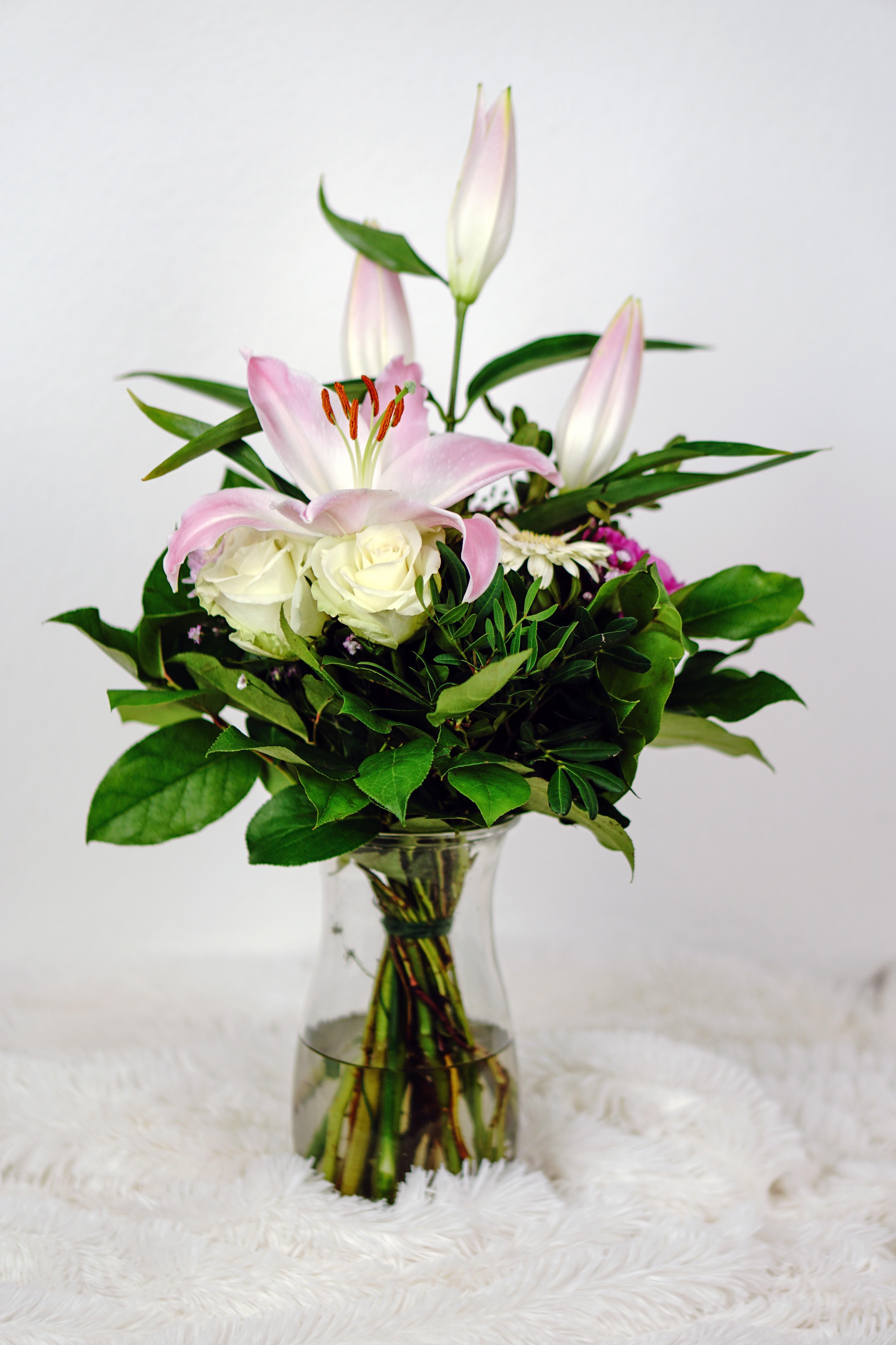 fotos gratis naturaleza flor florecer celebracion amor regalo decoracin verde vistoso rosado flora da de la boda flores art festival
