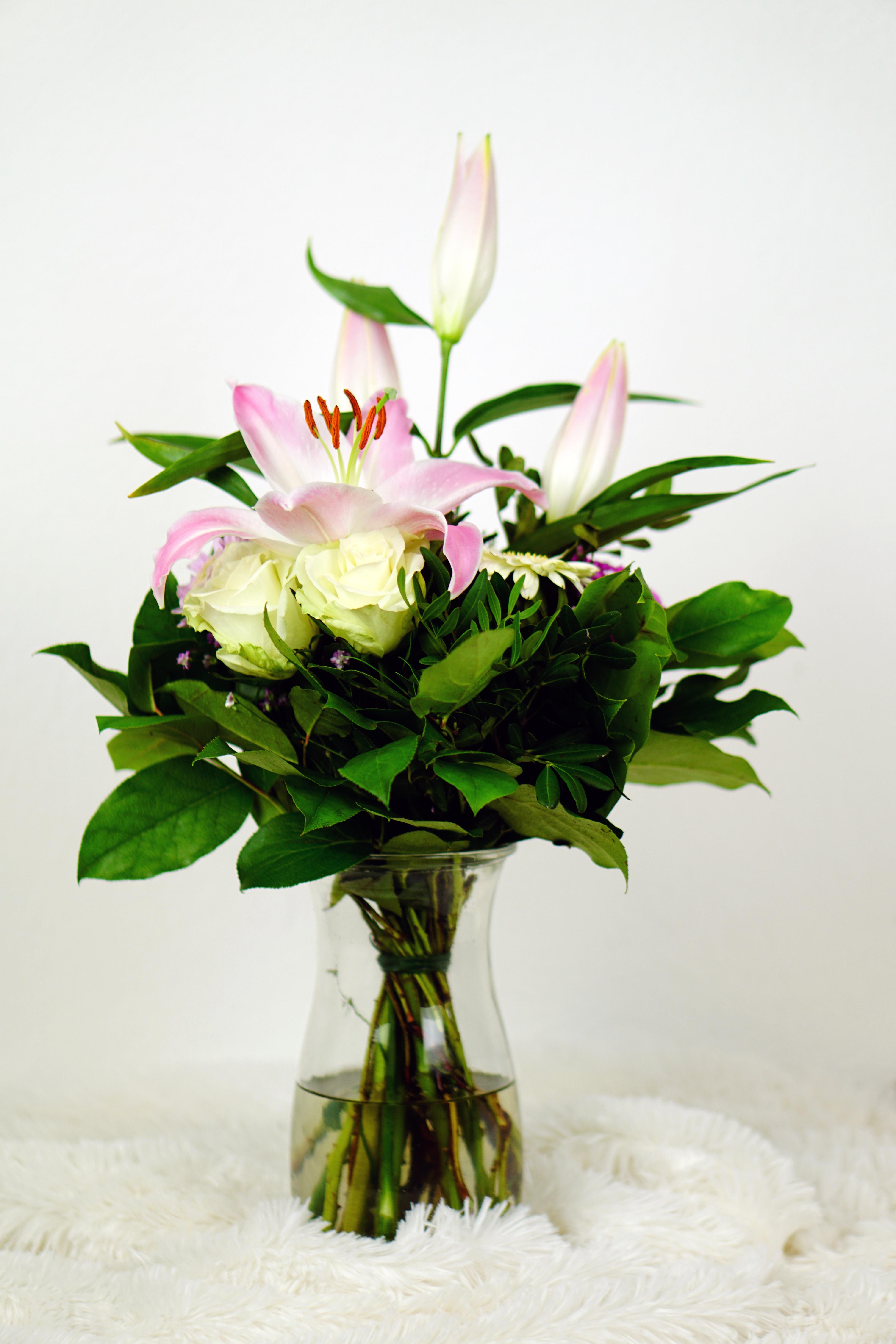 Free Images Nature Blossom Petal Bloom Celebration Love Gift
