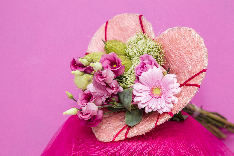 fotos gratis naturaleza flor ptalo corazn rosa primavera rosado flora arreglo floral flores floristera fotografa macro planta floreciendo