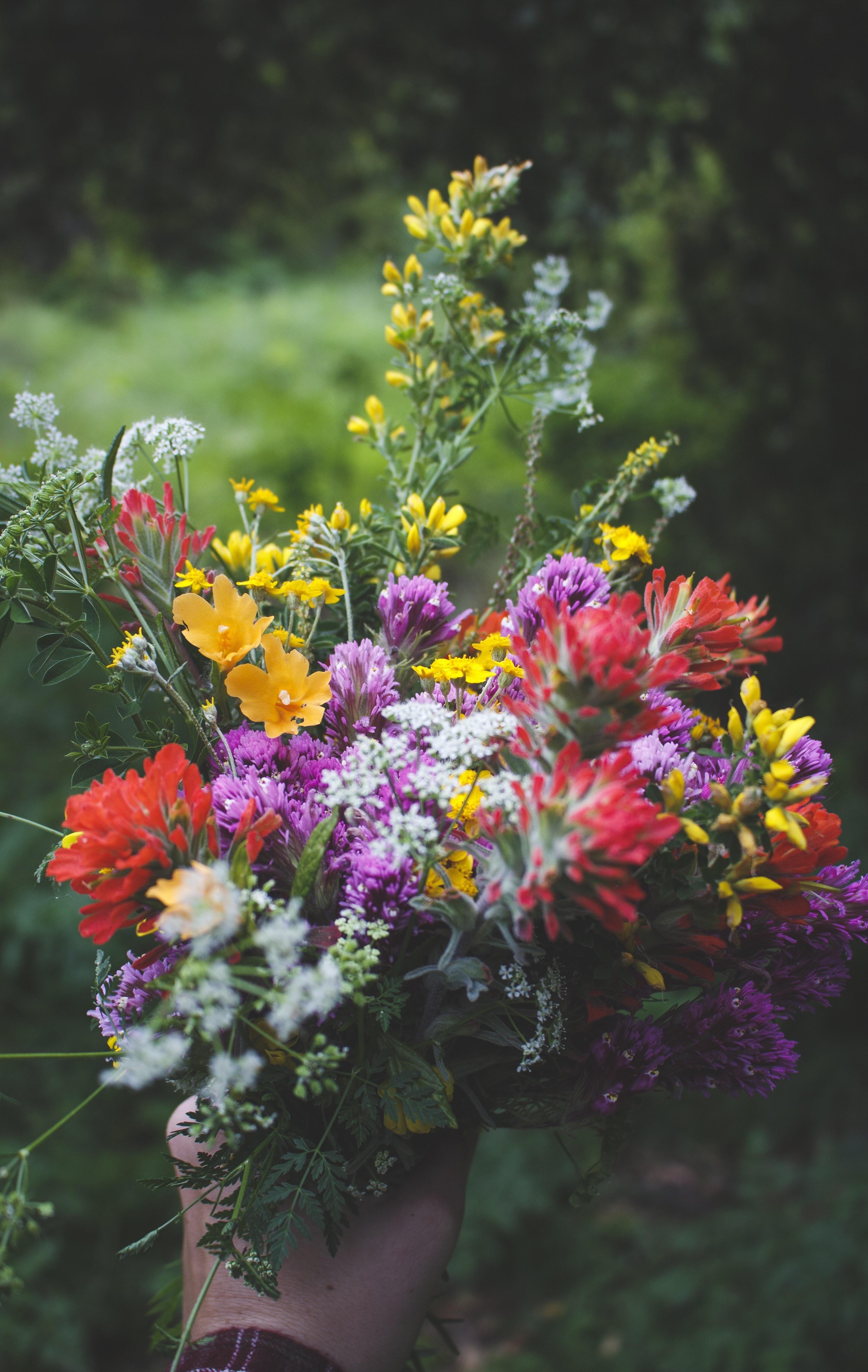 july-birthday-flower