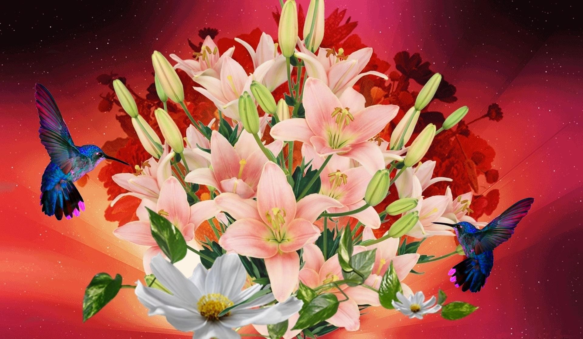 Download 52 Koleksi Wallpaper Bunga Lili Paling Keren