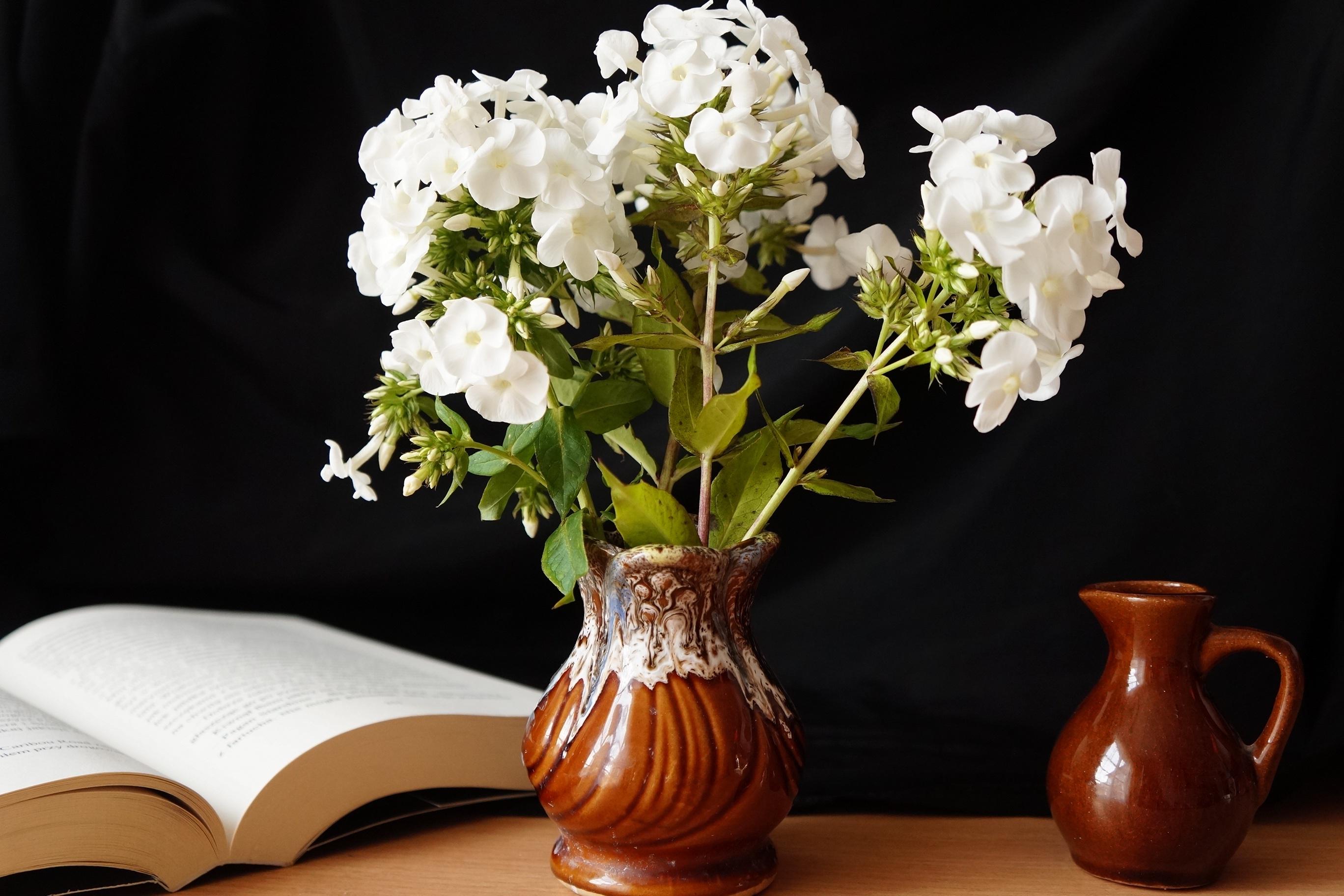 Скачать книгу флористика бесплатно