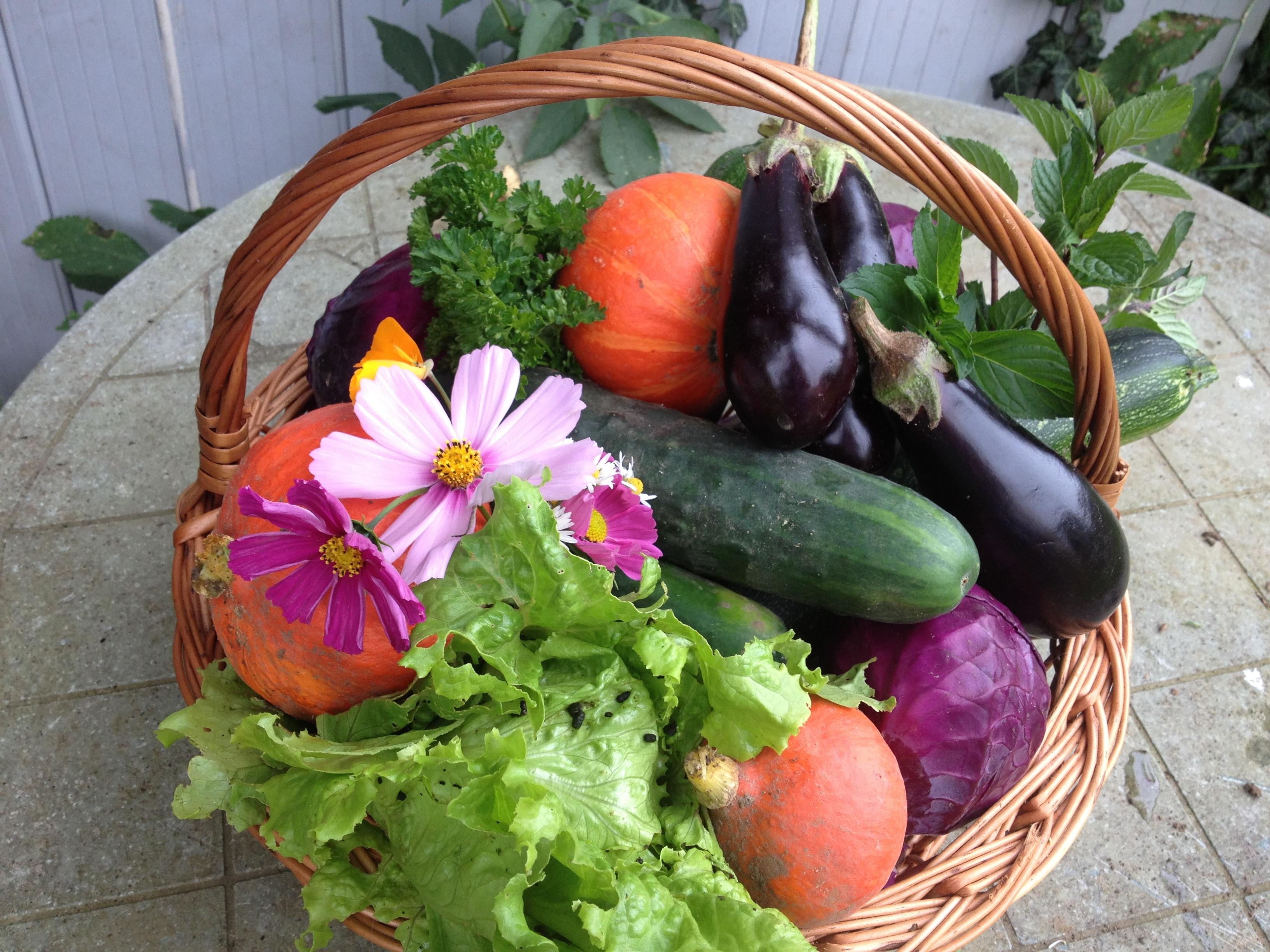 Images gratuites la nature cosmos fleur aliments - Panier legumes strasbourg ...