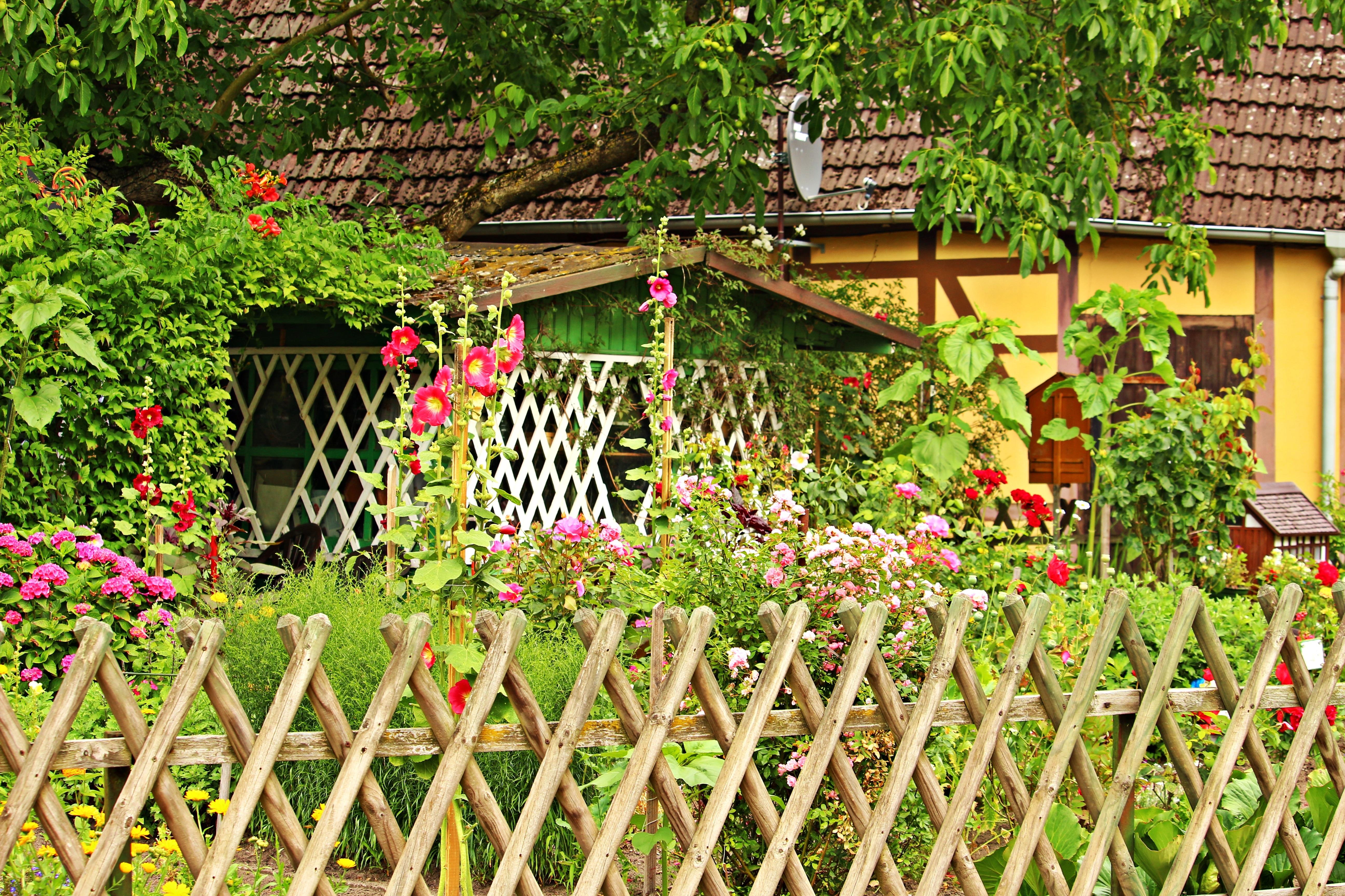 Забор для сада картинки