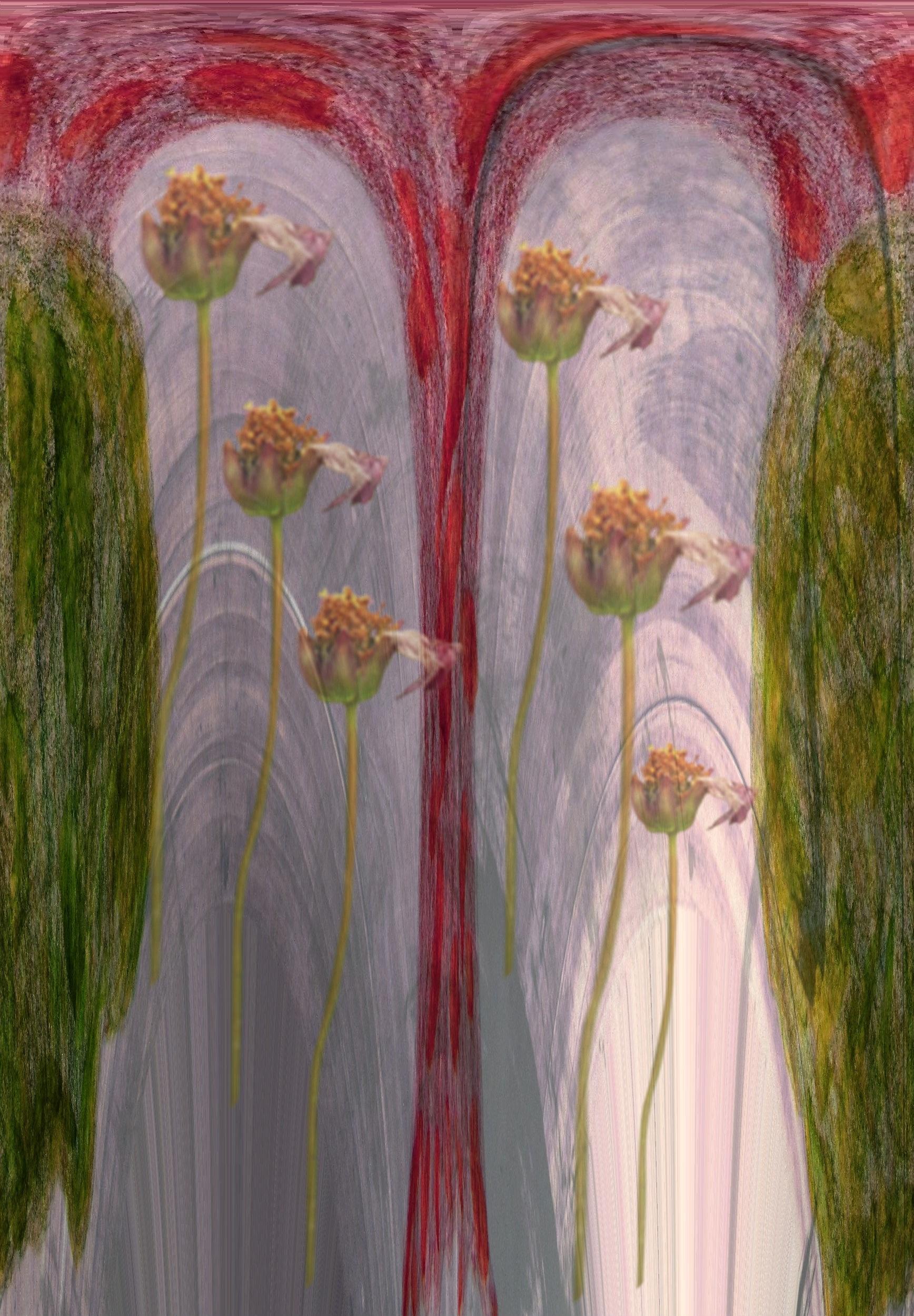 80+ Gambar Bunga Mawar Untuk Dilukis Paling Cantik