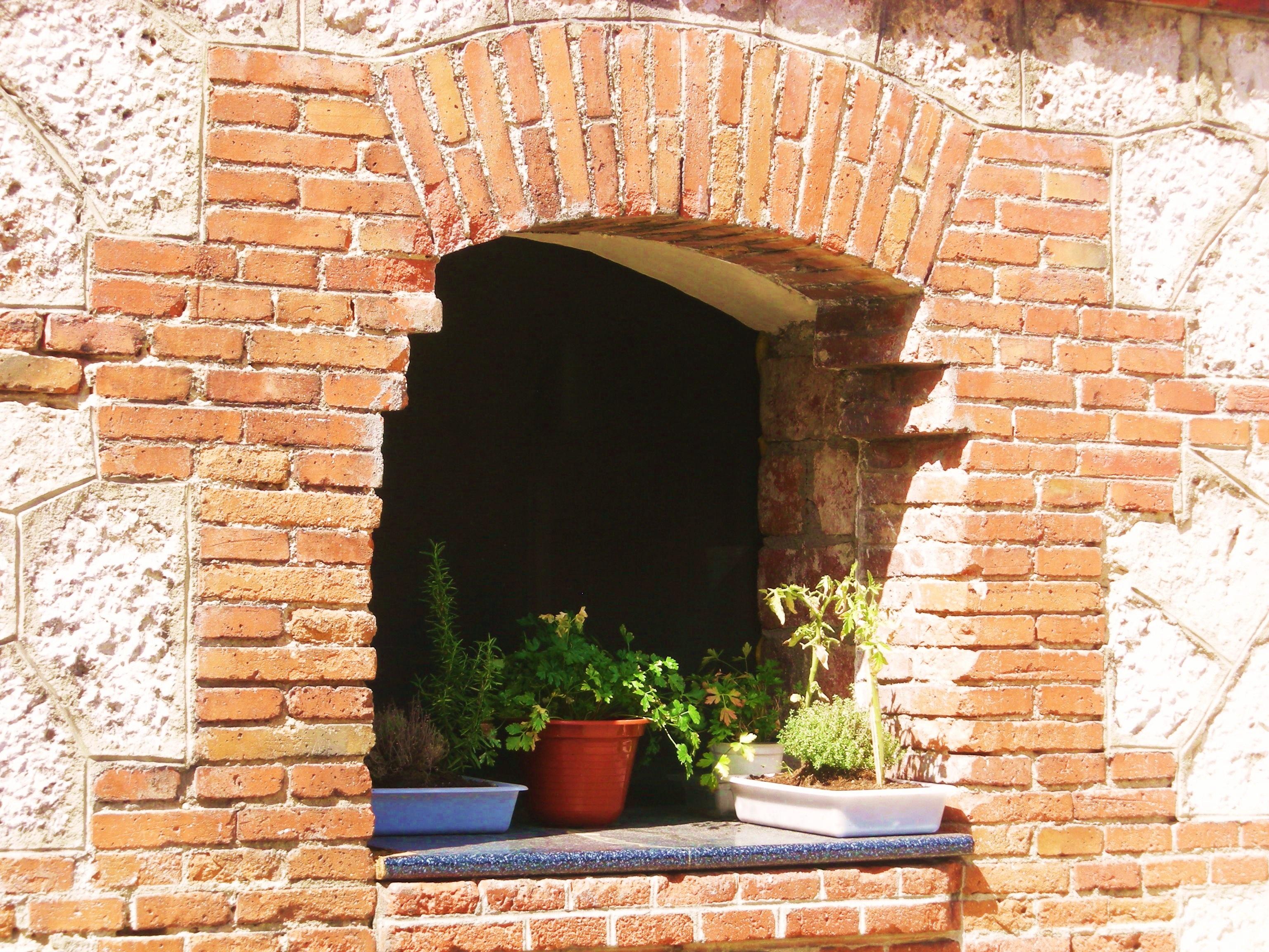 Fotos gratis naturaleza flor ventana pared floral for Arco decorativo jardin