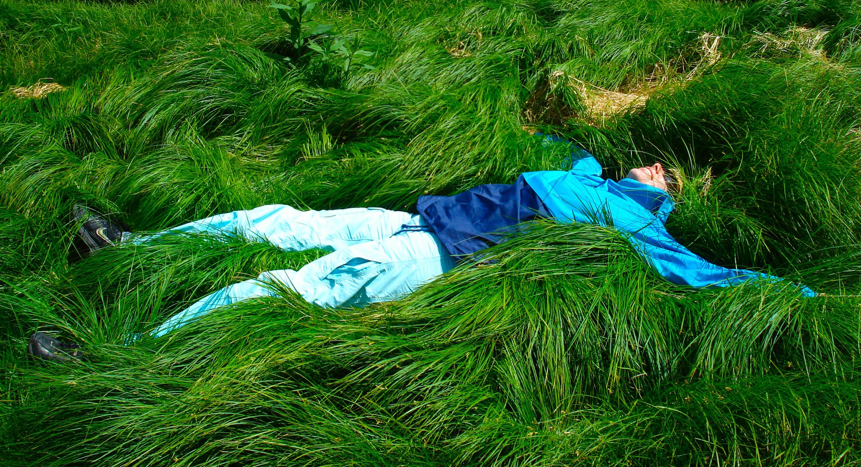 Картинки мужчина на траве