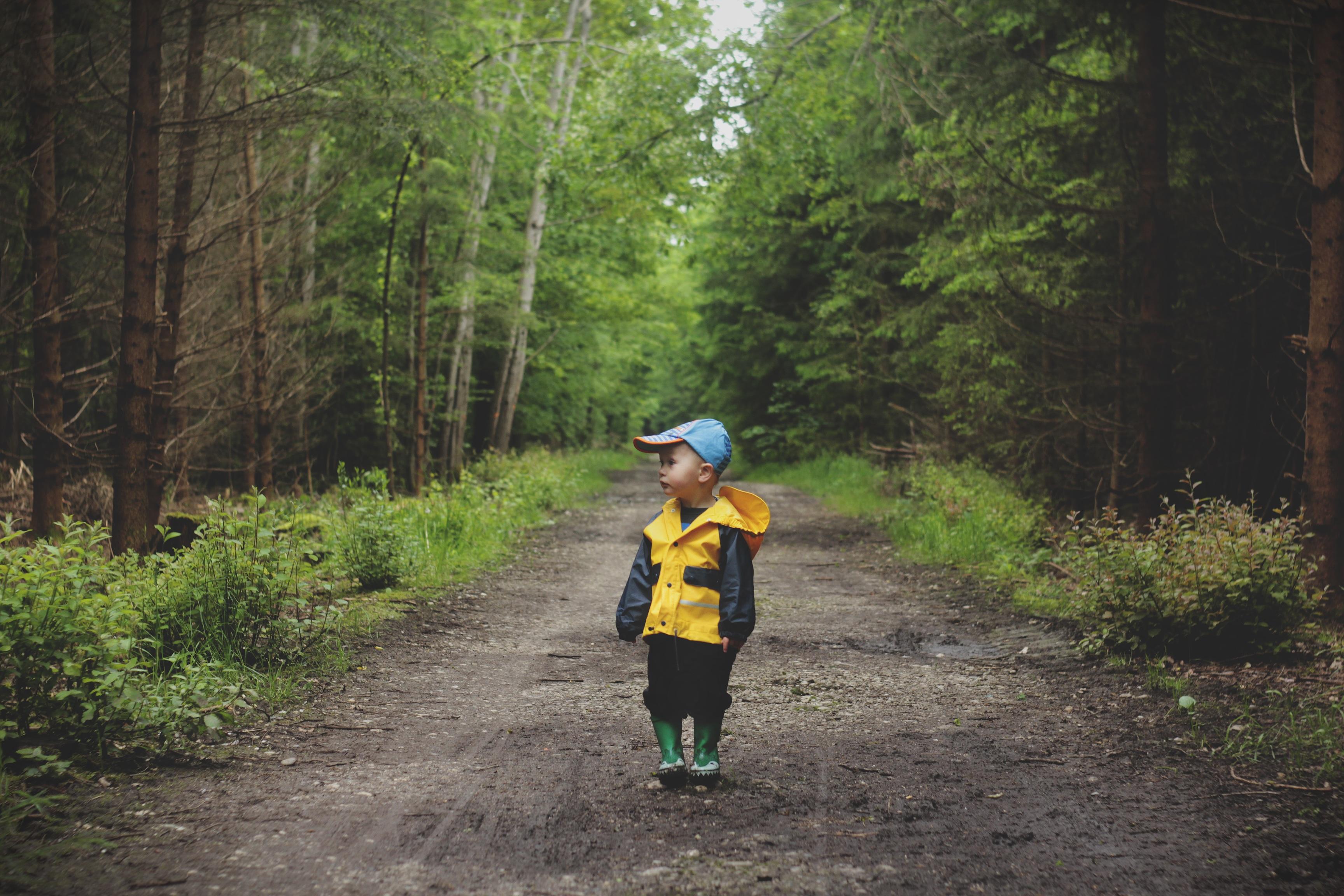 Картинка мальчик заблудился в лесу