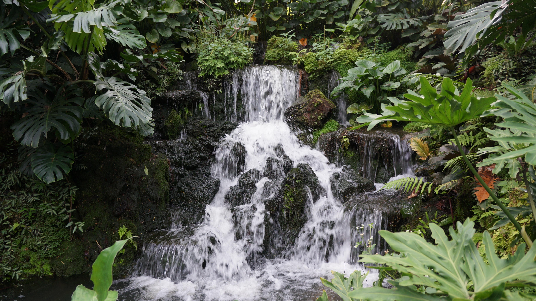 Waterval In Tuin : Waterval muur tuin ideetjes