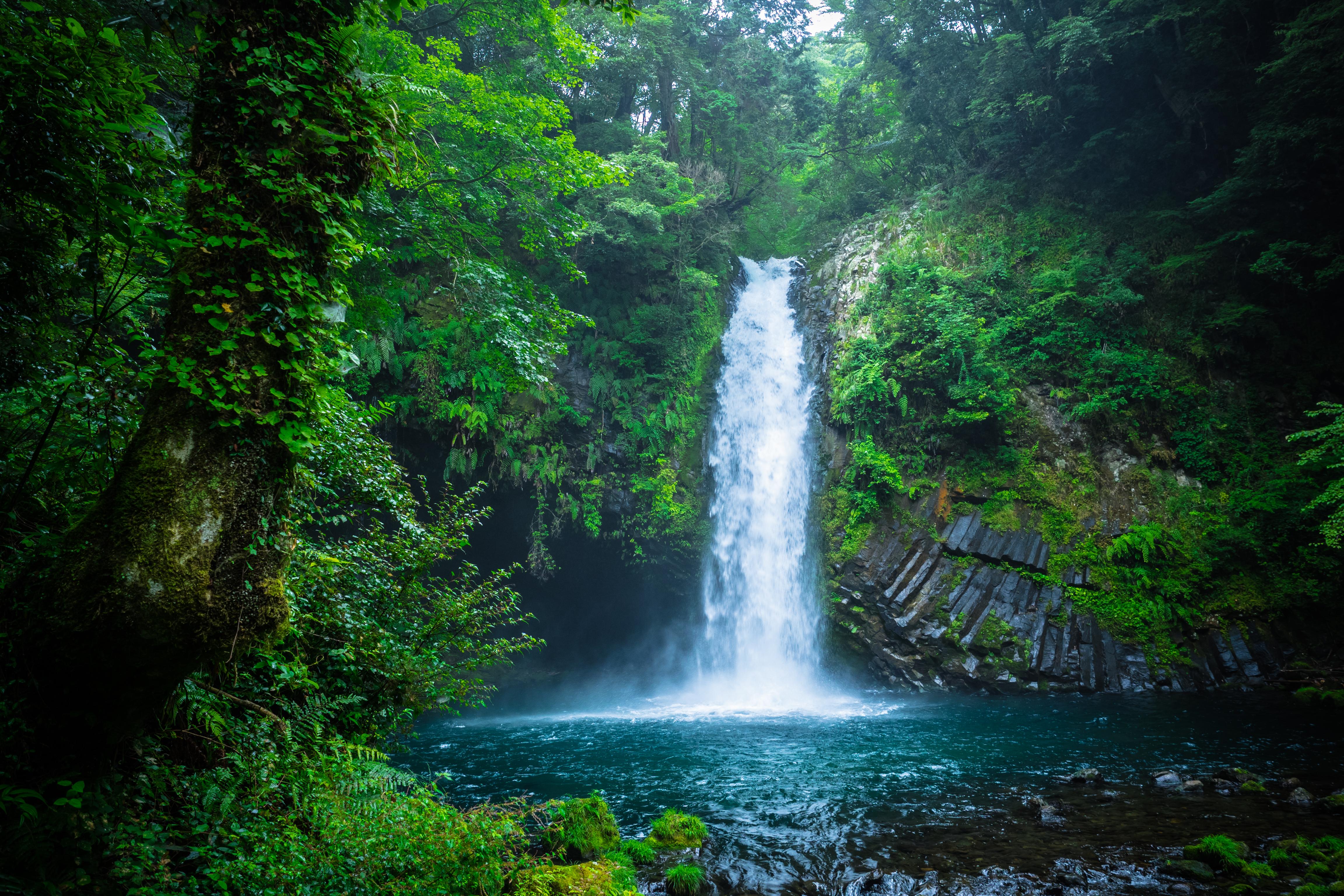 даже картинки леса с водопадом чебоксарах карте рядом