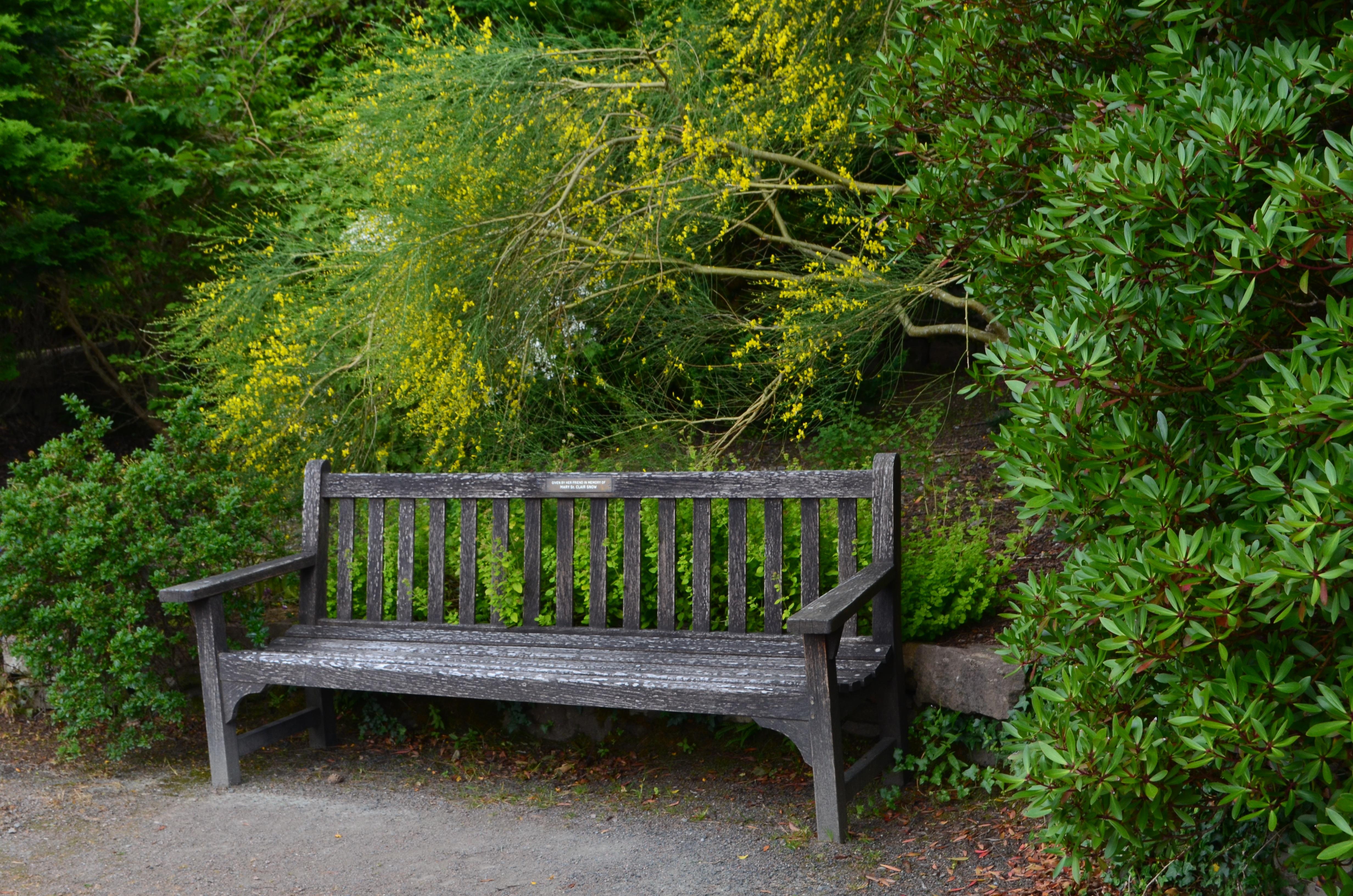 Fotos gratis : naturaleza, césped, banco, flor, cabaña, patio ...