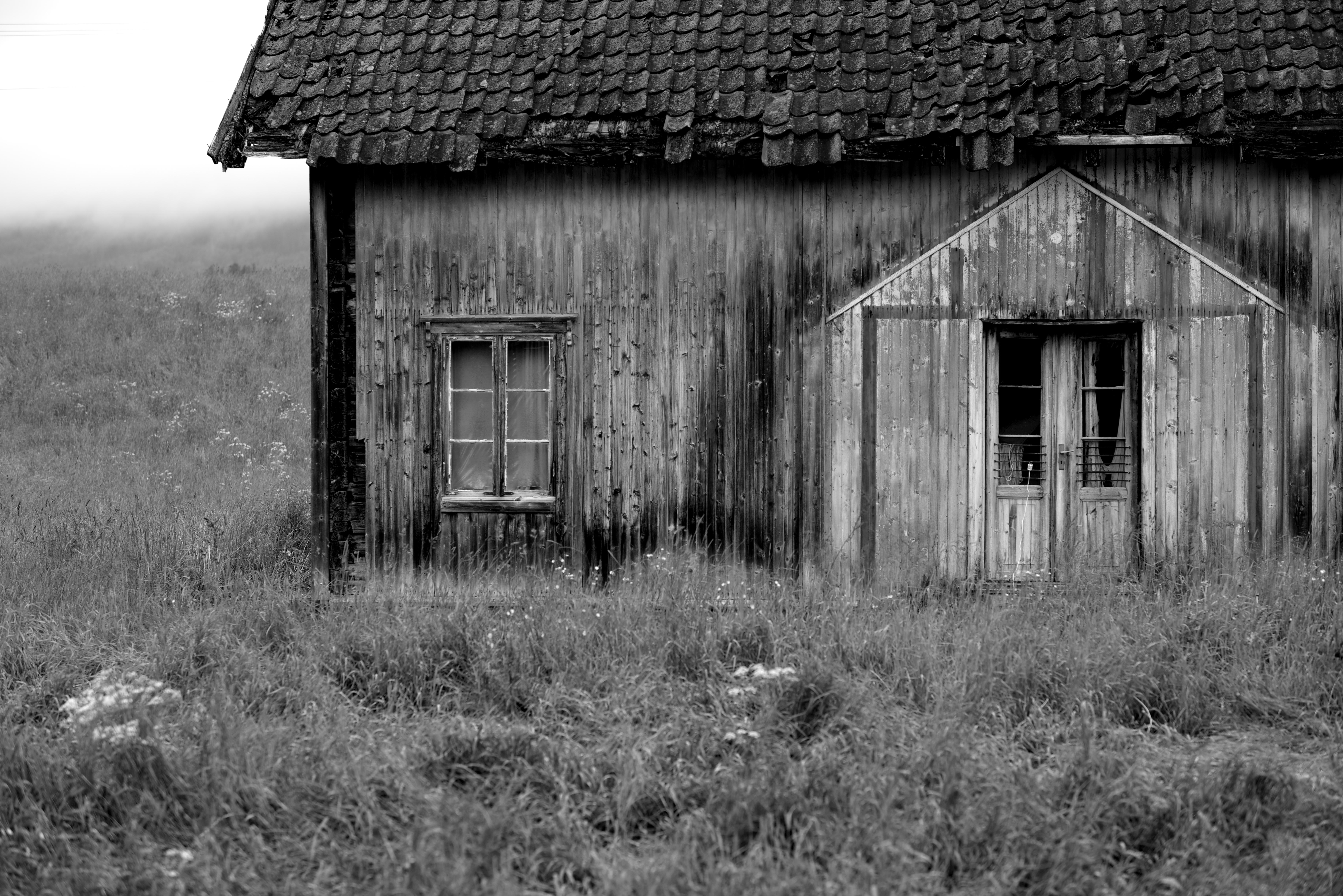 Images gratuites la nature herbe noir et blanc ciel for Ferme la fenetre