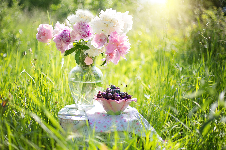 ткань солнечное утро картинки красивые необычные нежные проявляється реакція рослин