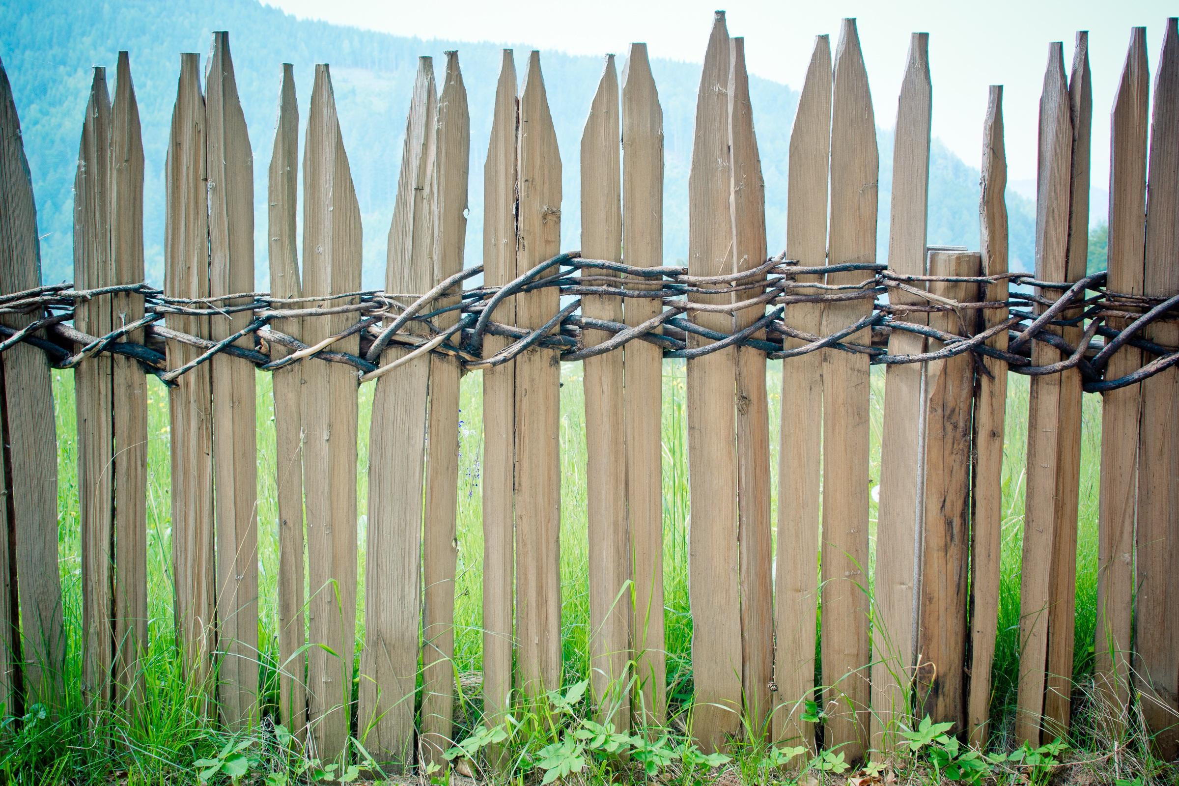 Gratis afbeeldingen natuur tak hek hout bloem itali landbouw takje vlecht vlechtwerk - Bamboe hek ...