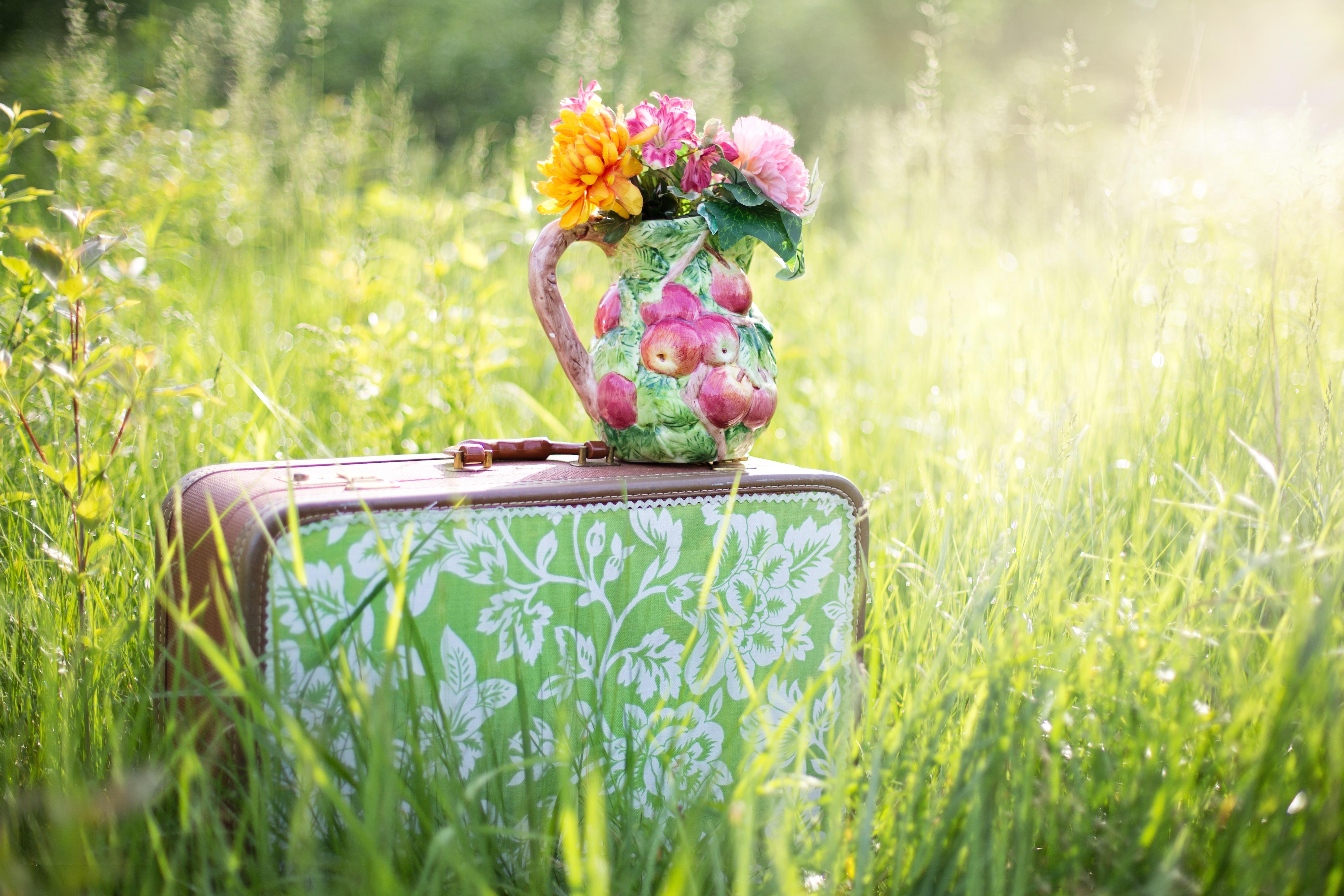 Цветы и путешествия