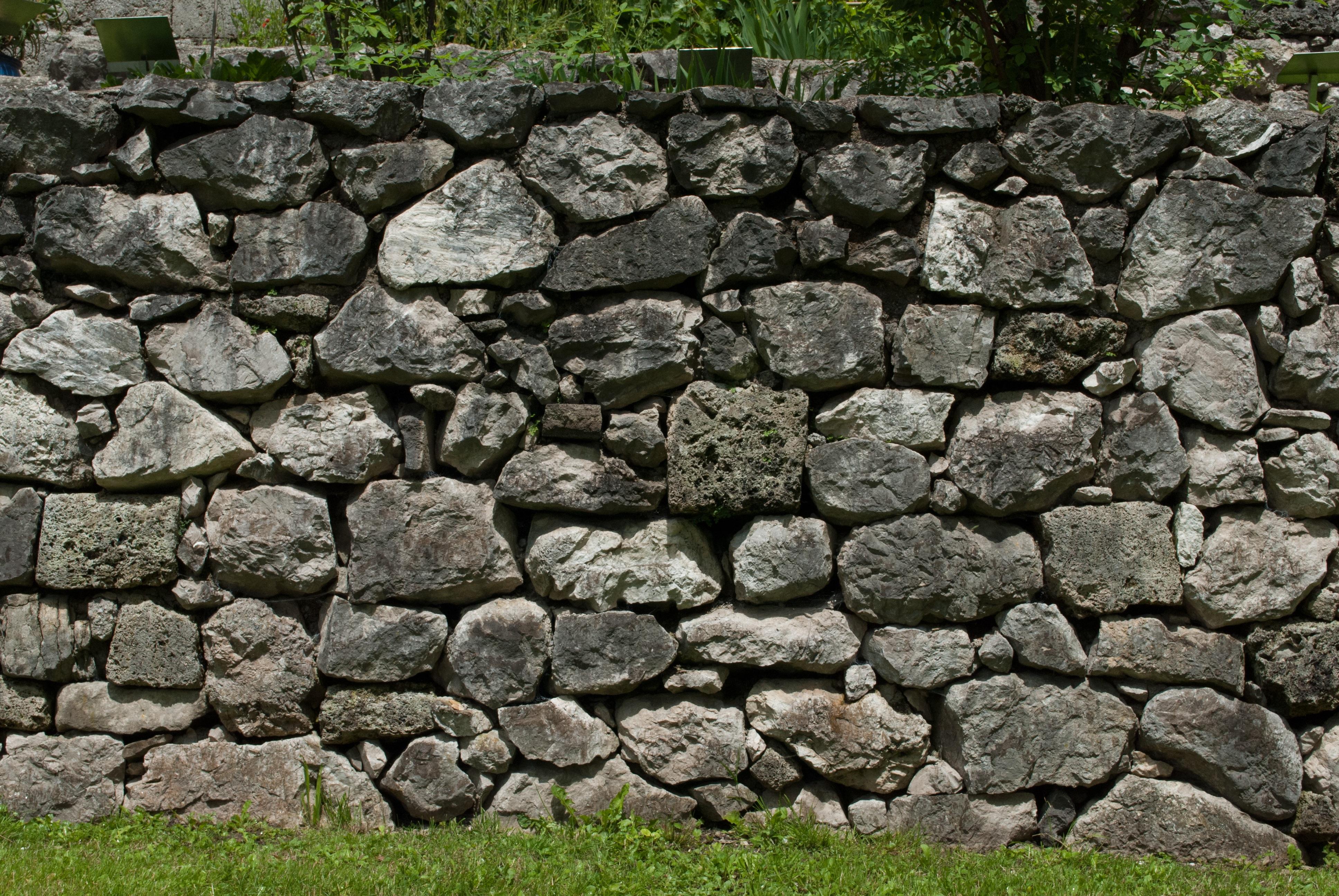 Free images nature grass rock plant building - Muro de piedra natural ...