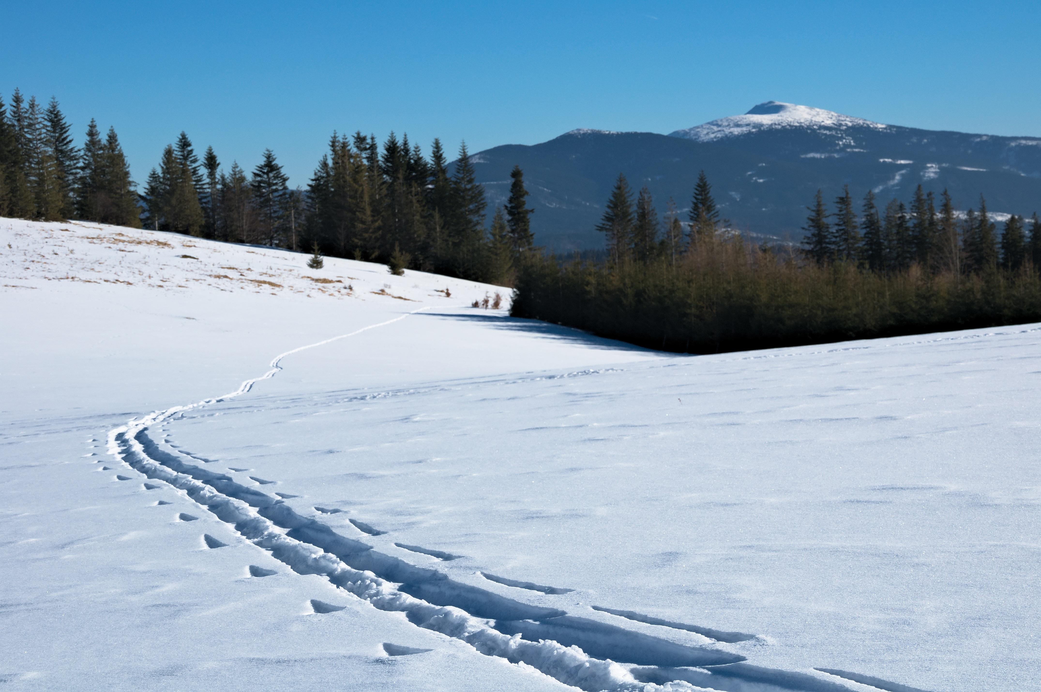 виды снега картинки рублёва сложилось
