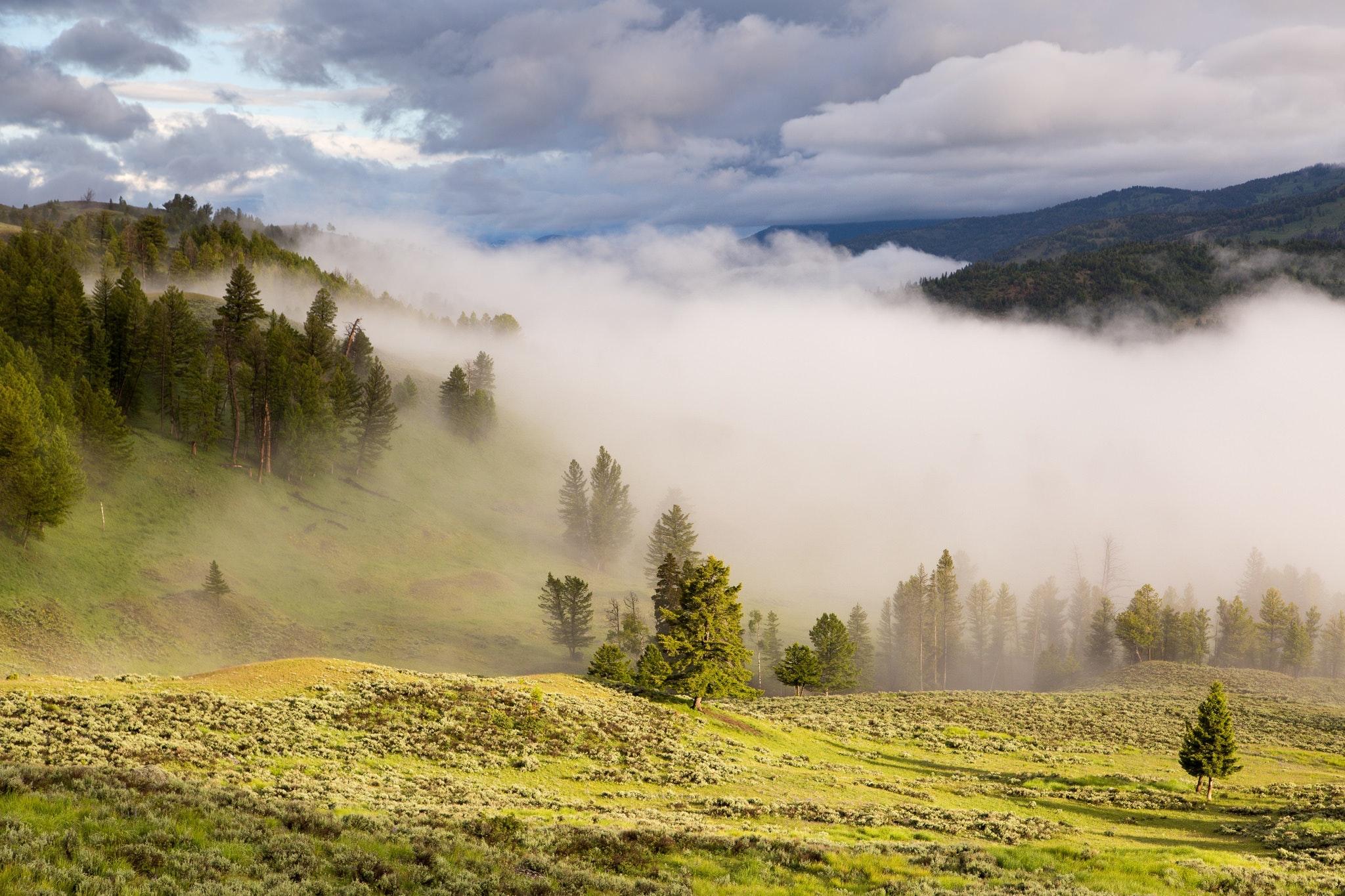 Фото тумана в горах