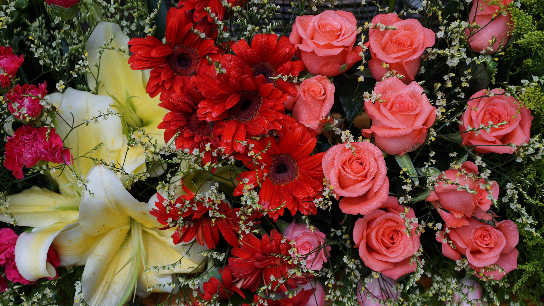 Fleurs de jardin rose for Fleuriste jardin des fleurs