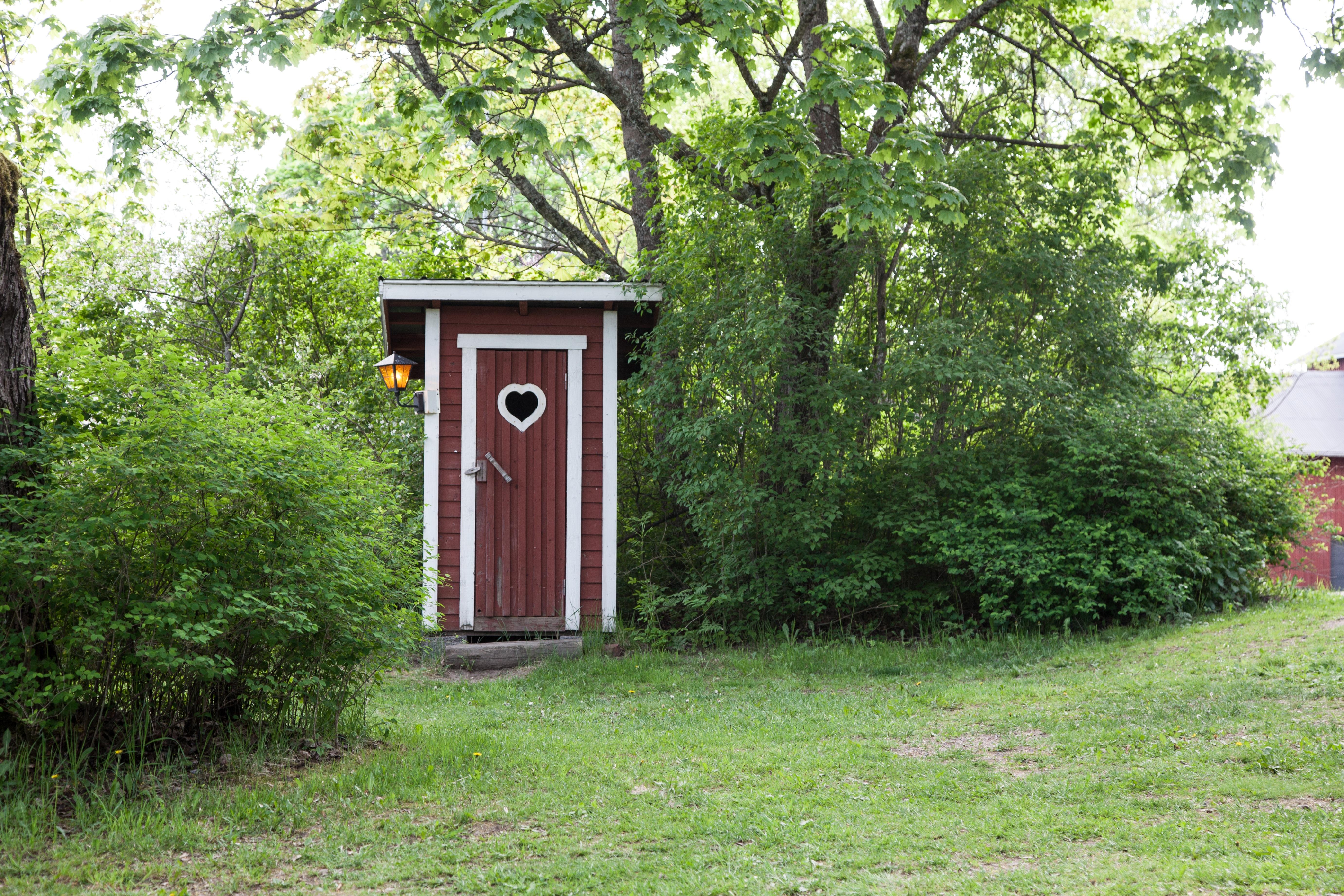 Sanitair Van Hout : Gratis afbeeldingen natuur buitenshuis architectuur hout
