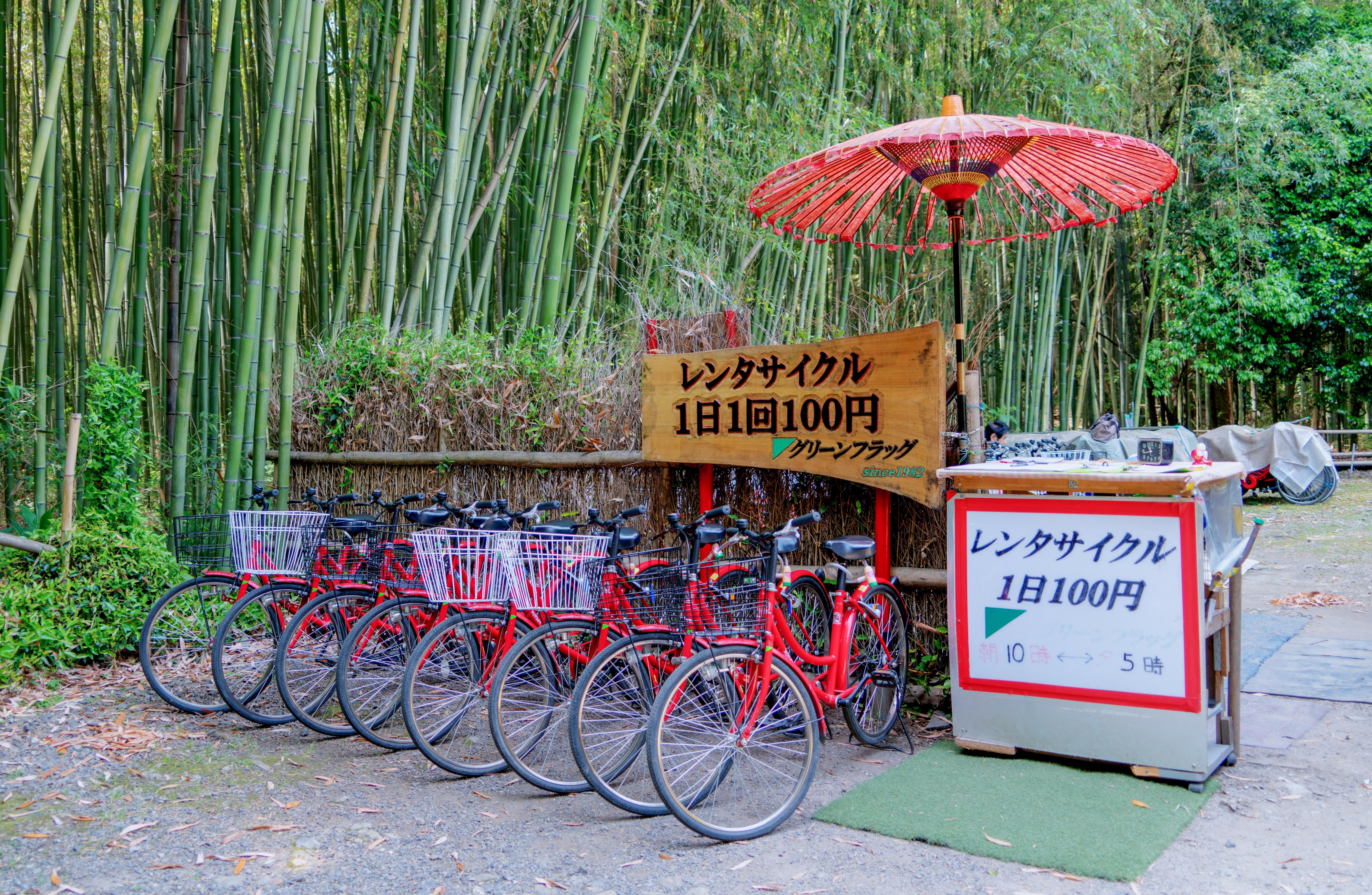 Kostenlose Foto Natur Draussen Fahrrad Sommer Grun Fahrzeug