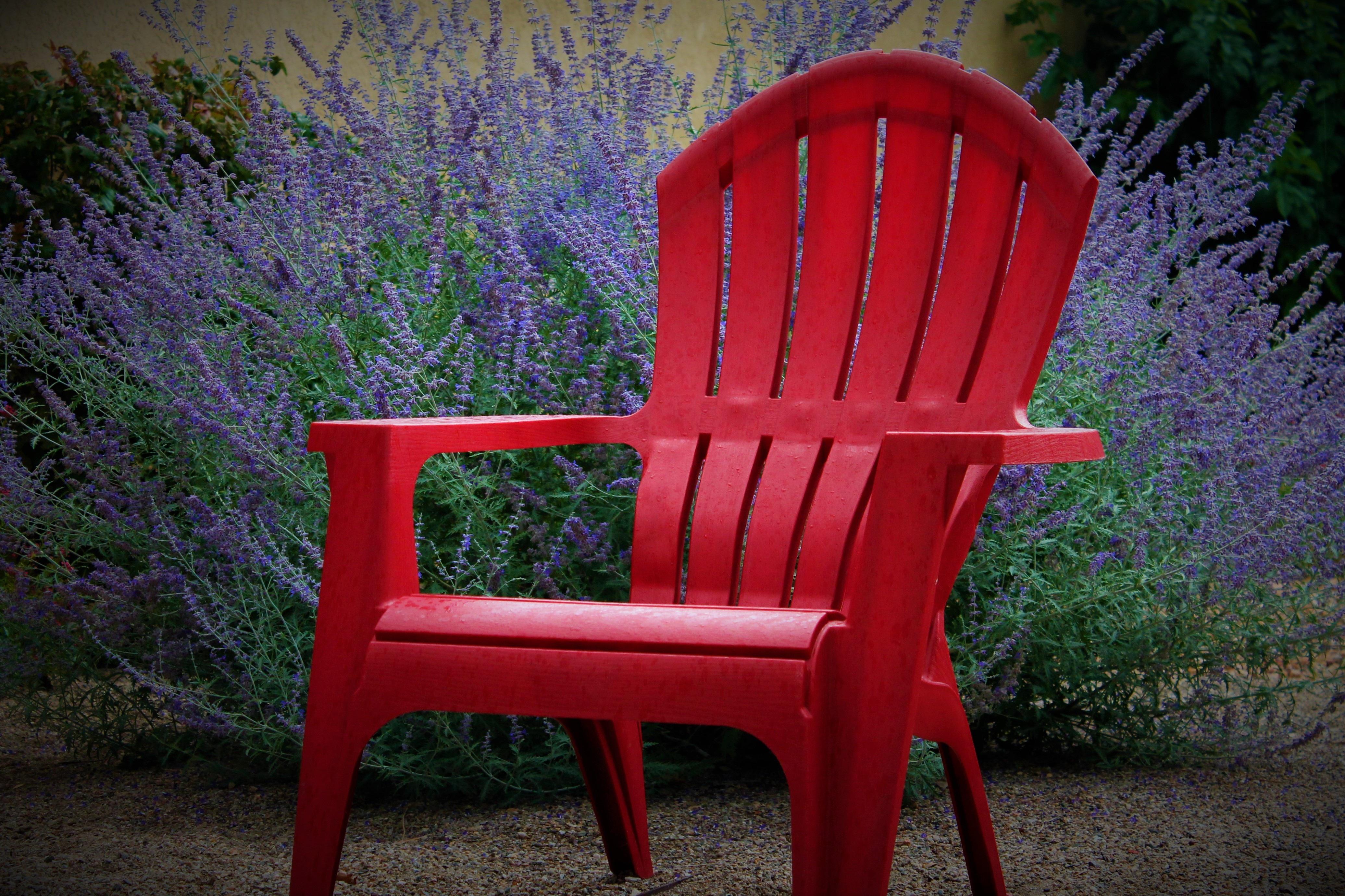 Fotos gratis : naturaleza, al aire libre, césped, silla, mojado ...