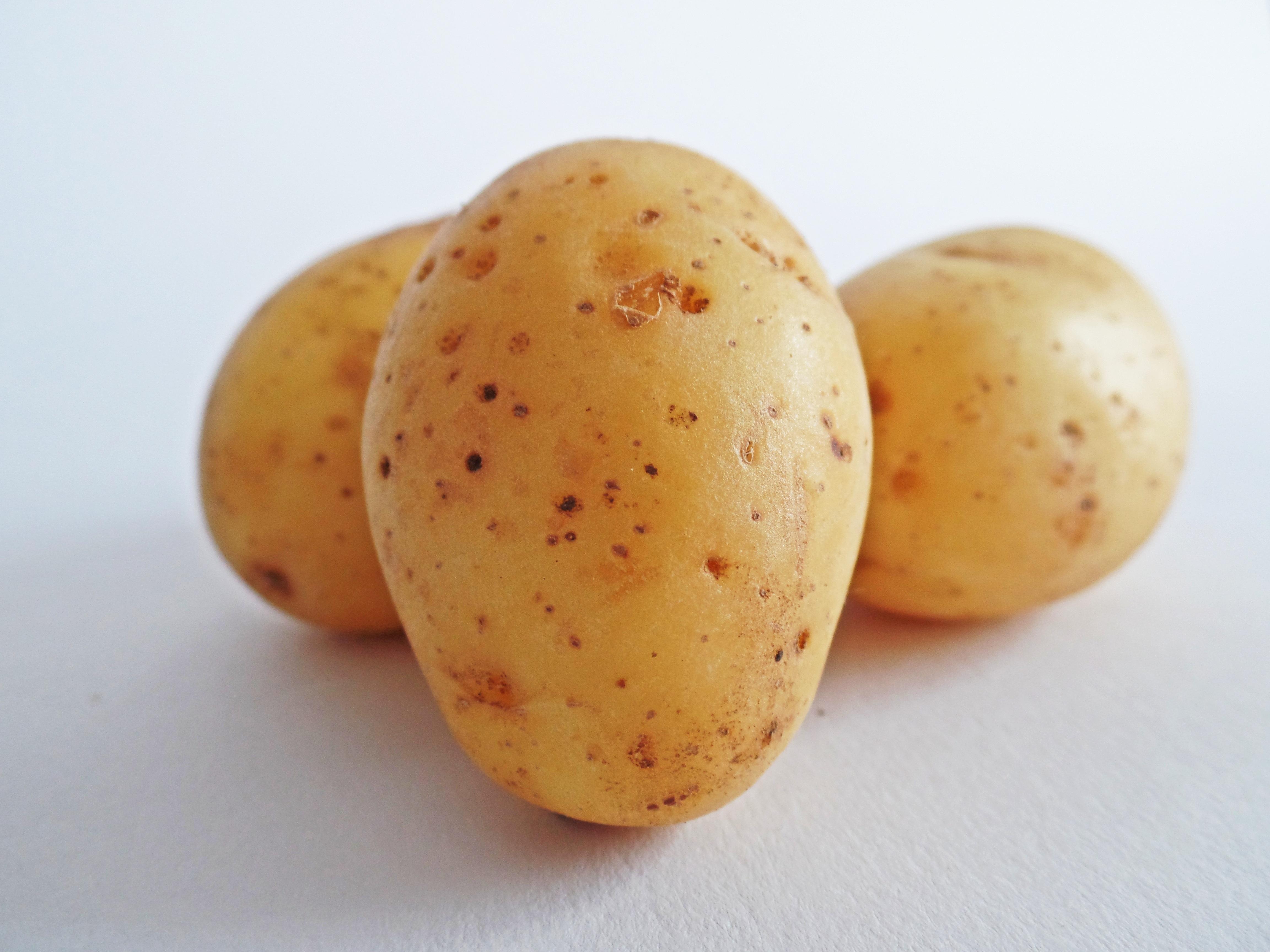 Är potatis en grönsak