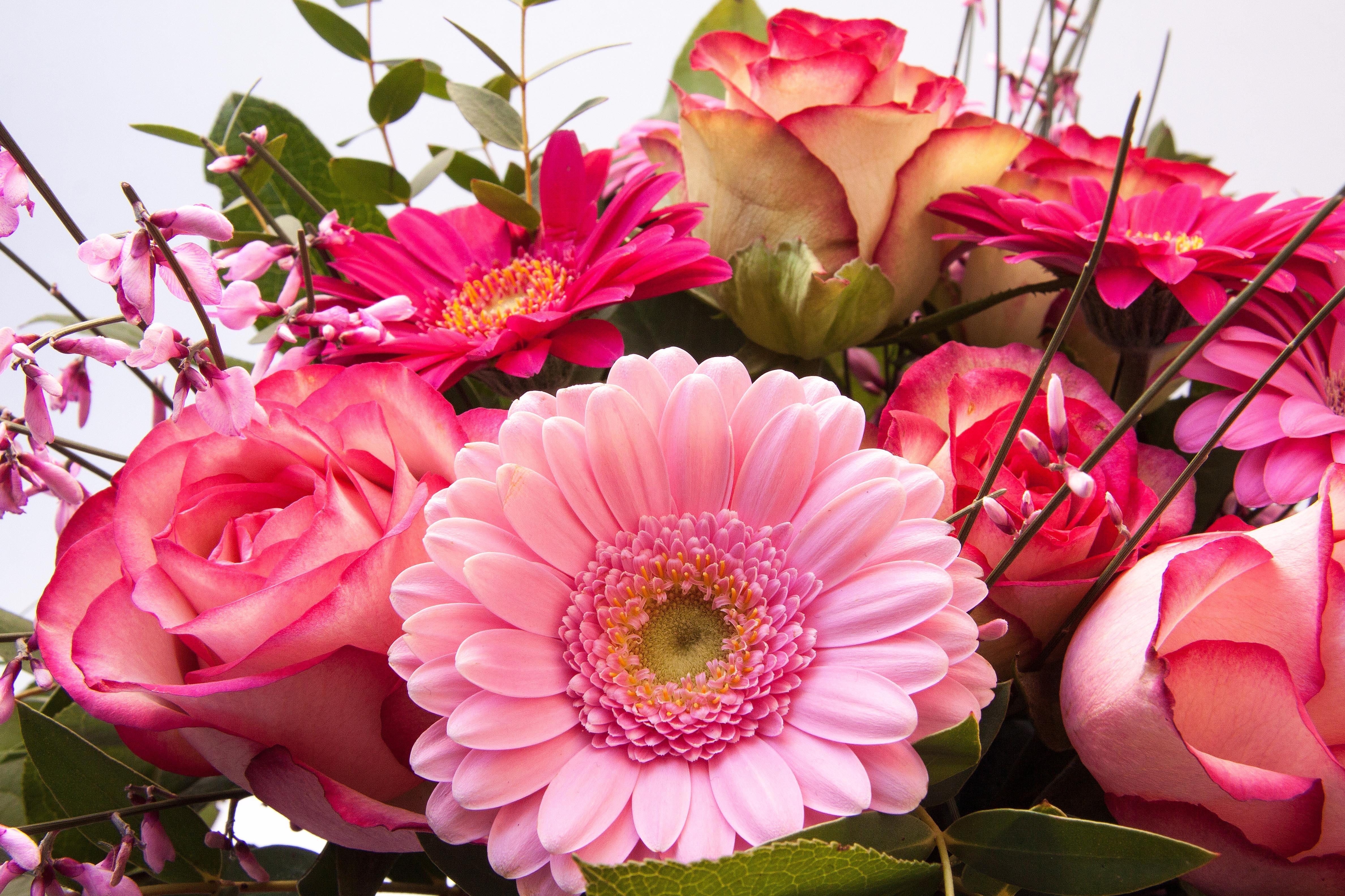 Открытка с цветами друзьям