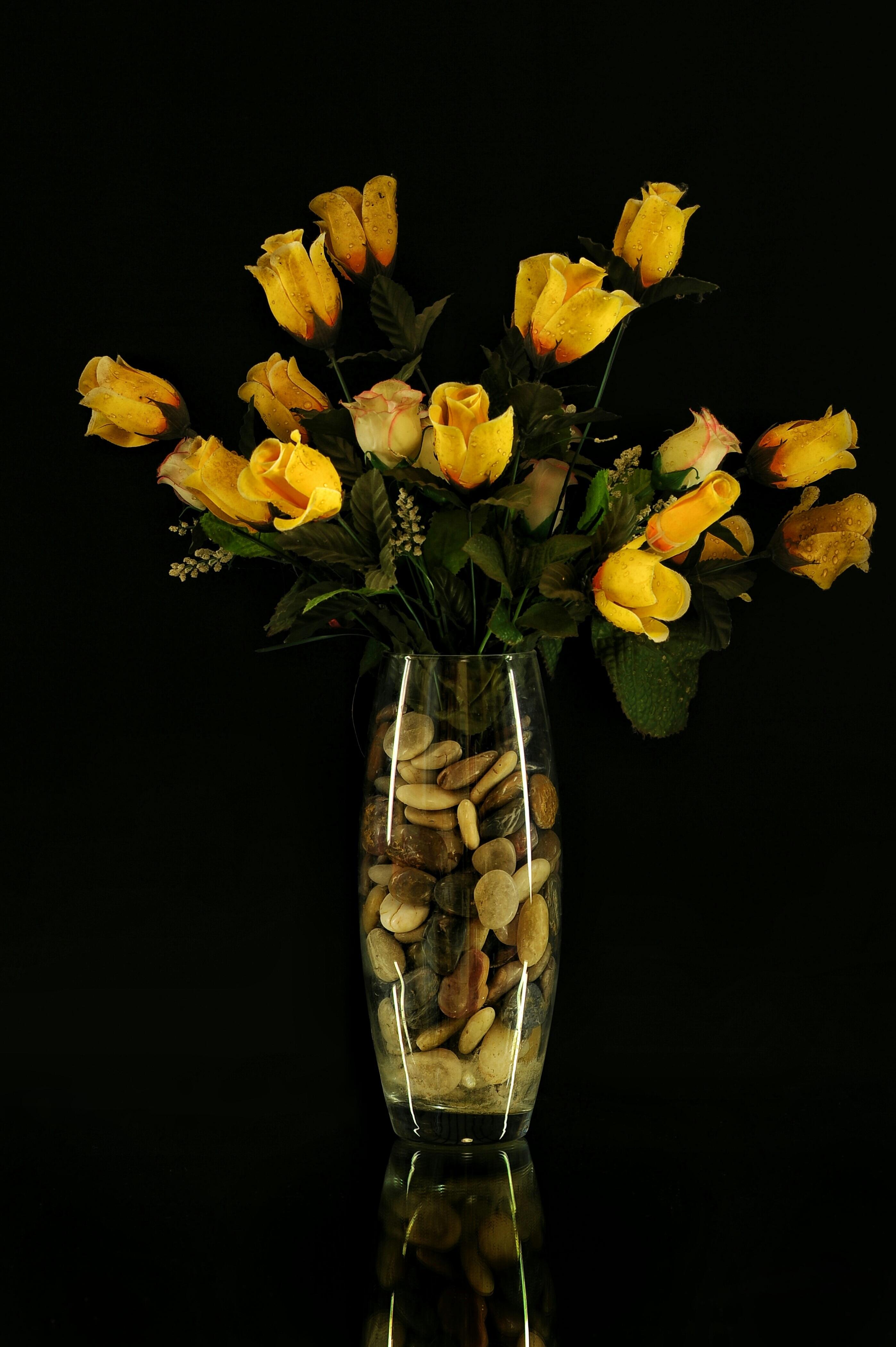 Free Images  nature, petal, dark, vase, rose, decoration