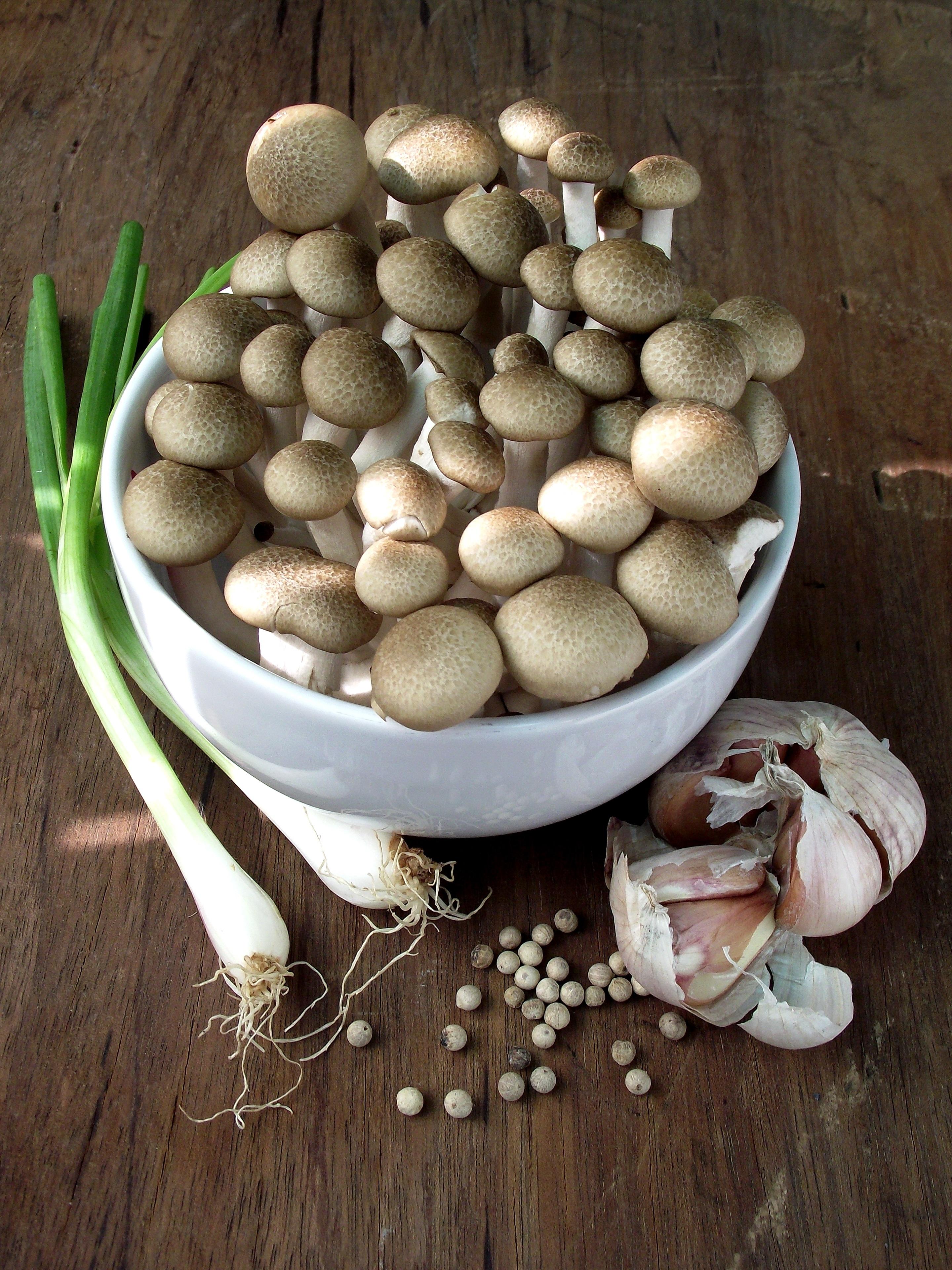 грибы овощи картинка иногда городской суете