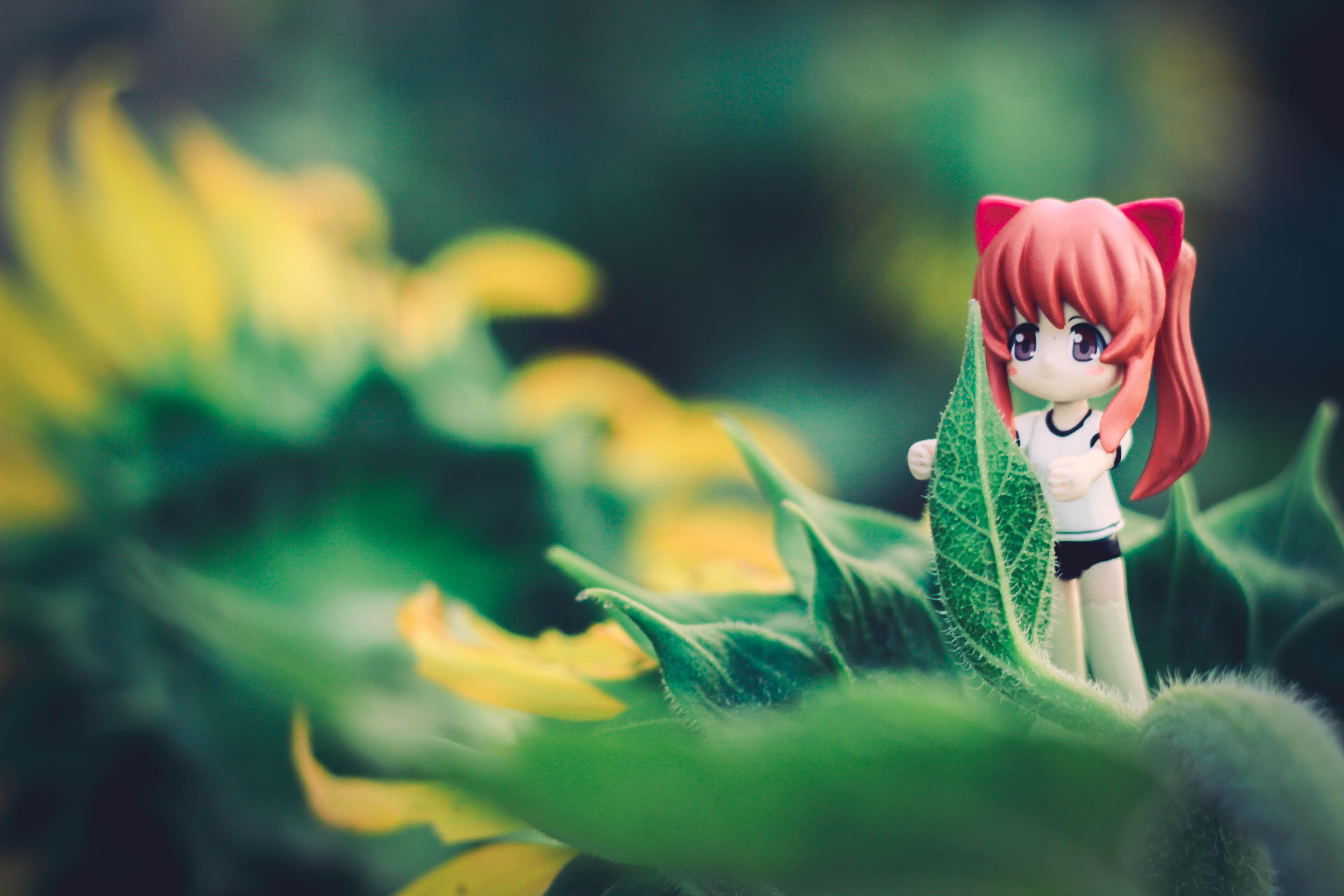 Gambar Alam Menanam Gadis Bunga Model Hijau Warna Kuning
