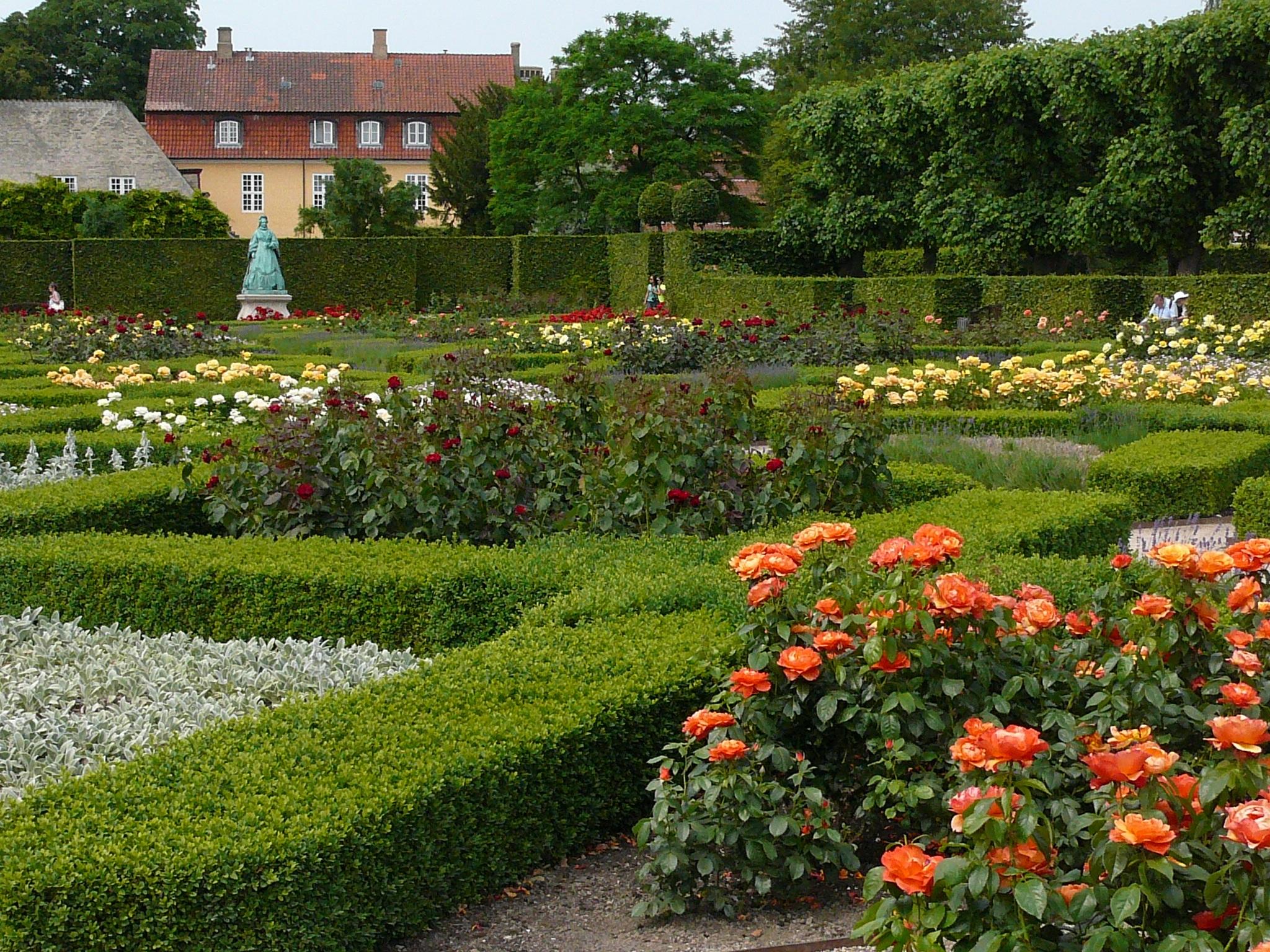 nature plant lawn flower park backyard botany garden places of interest capital shrub denmark copenhagen botanical - Backyard Rose Garden