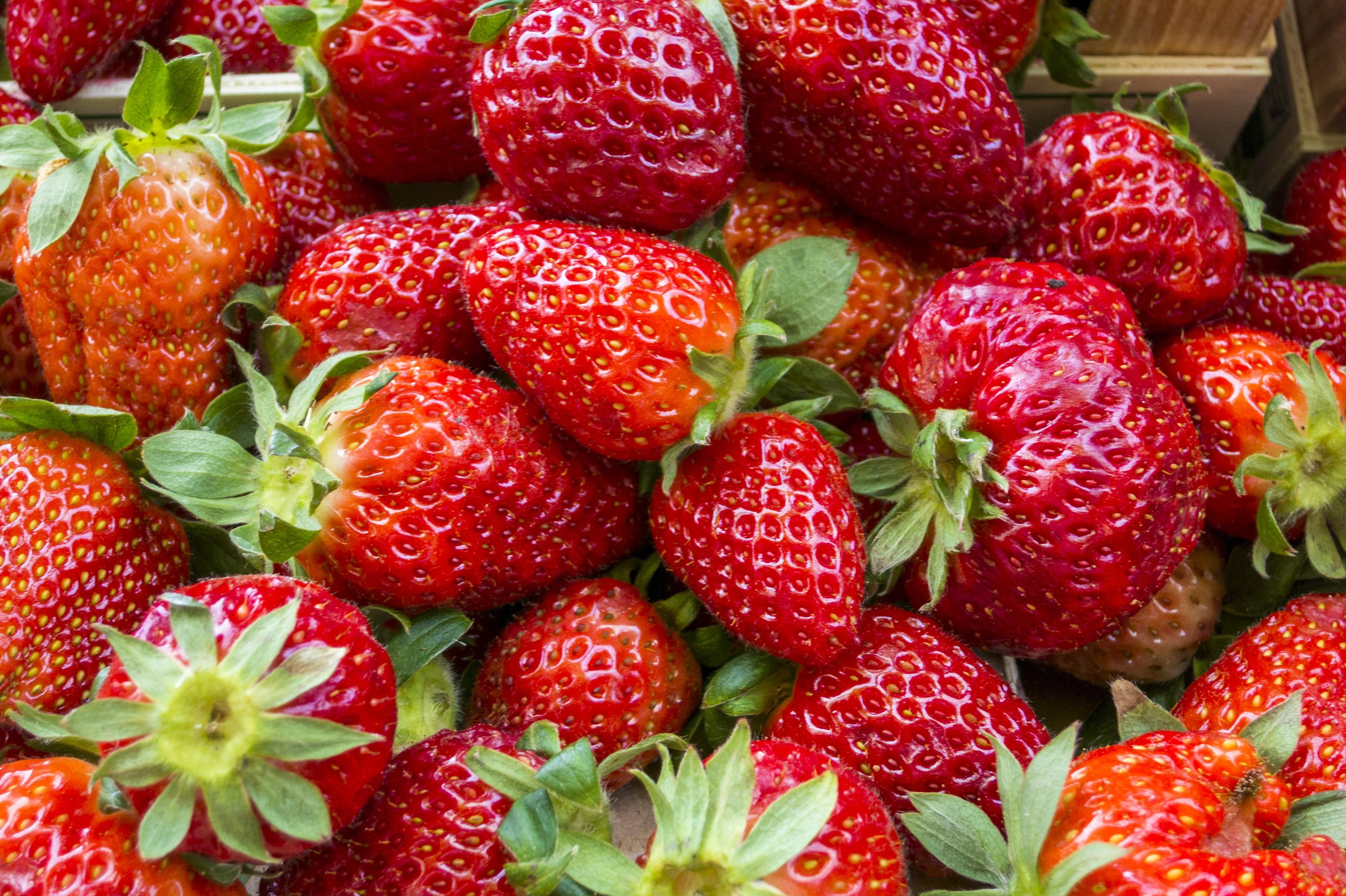 Immagini belle natura lampone frutta bacca dolce for Pianta di fragole