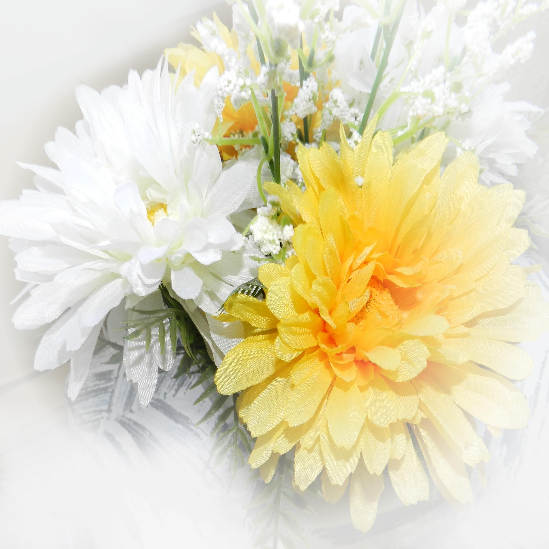 Gambar alam menanam putih daun bunga musim semi kuning kertas bunga bunga Latar Belakang gerbera Budidaya Bunga peony tanaman berbunga