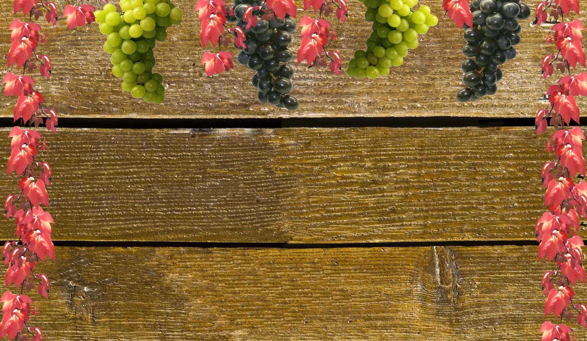 Kostenlose foto : Natur, Pflanze, Holz, Blume, rot, produzieren ...