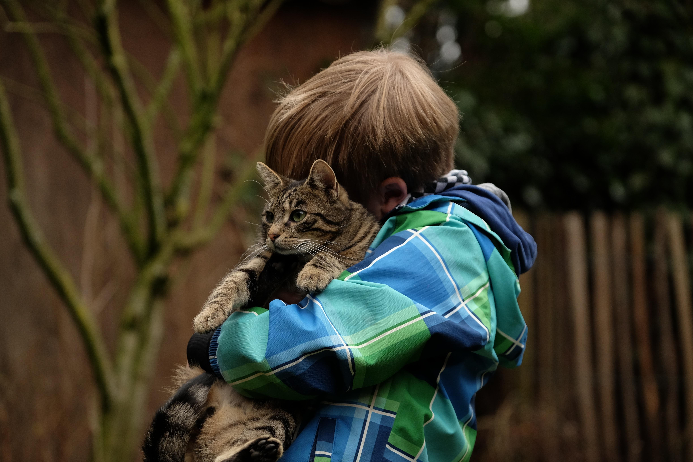 Kostenlose Foto Natur Spielen Suss Land Katze Kind Kleidung