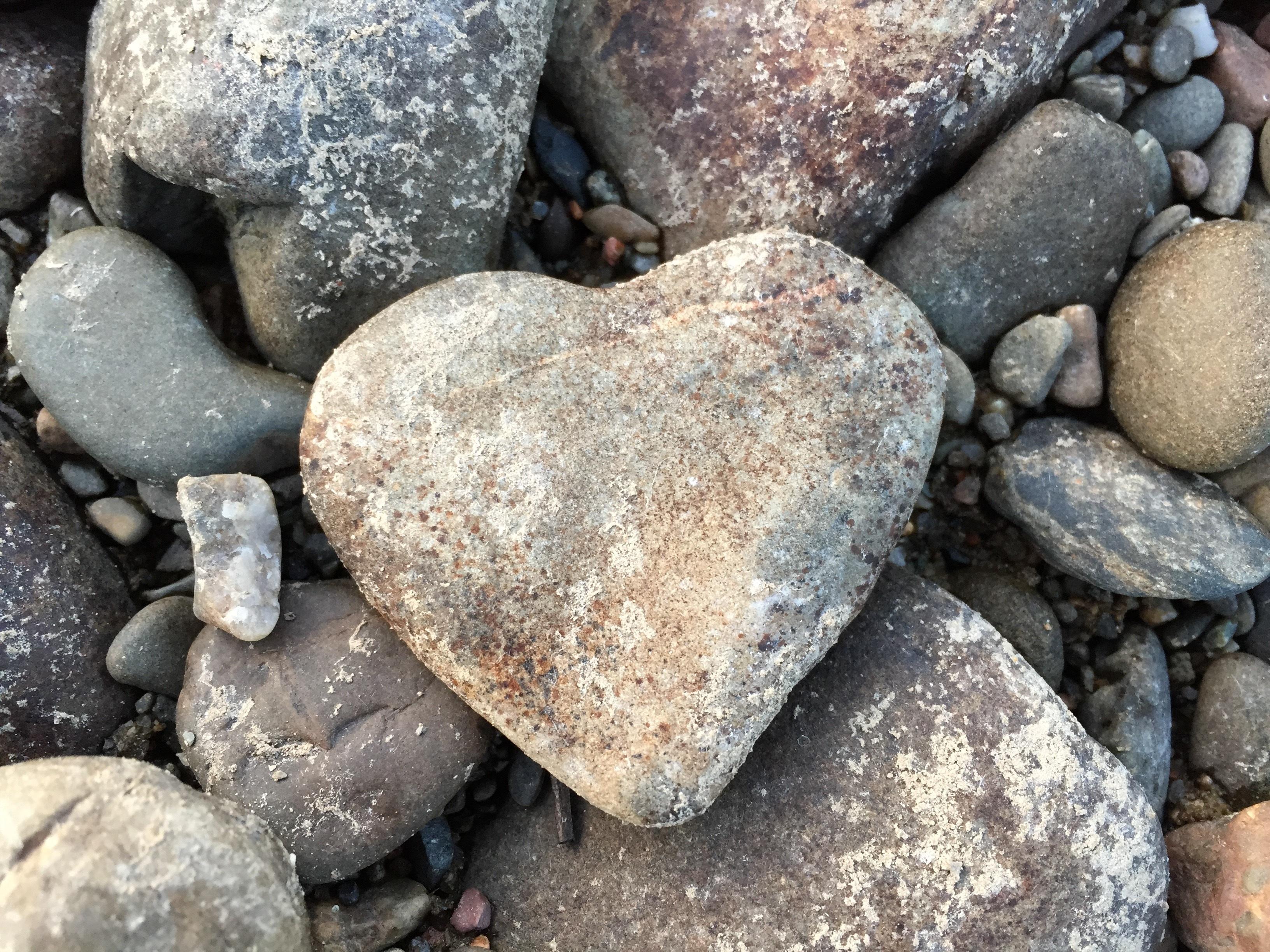 Сердце из камней 152