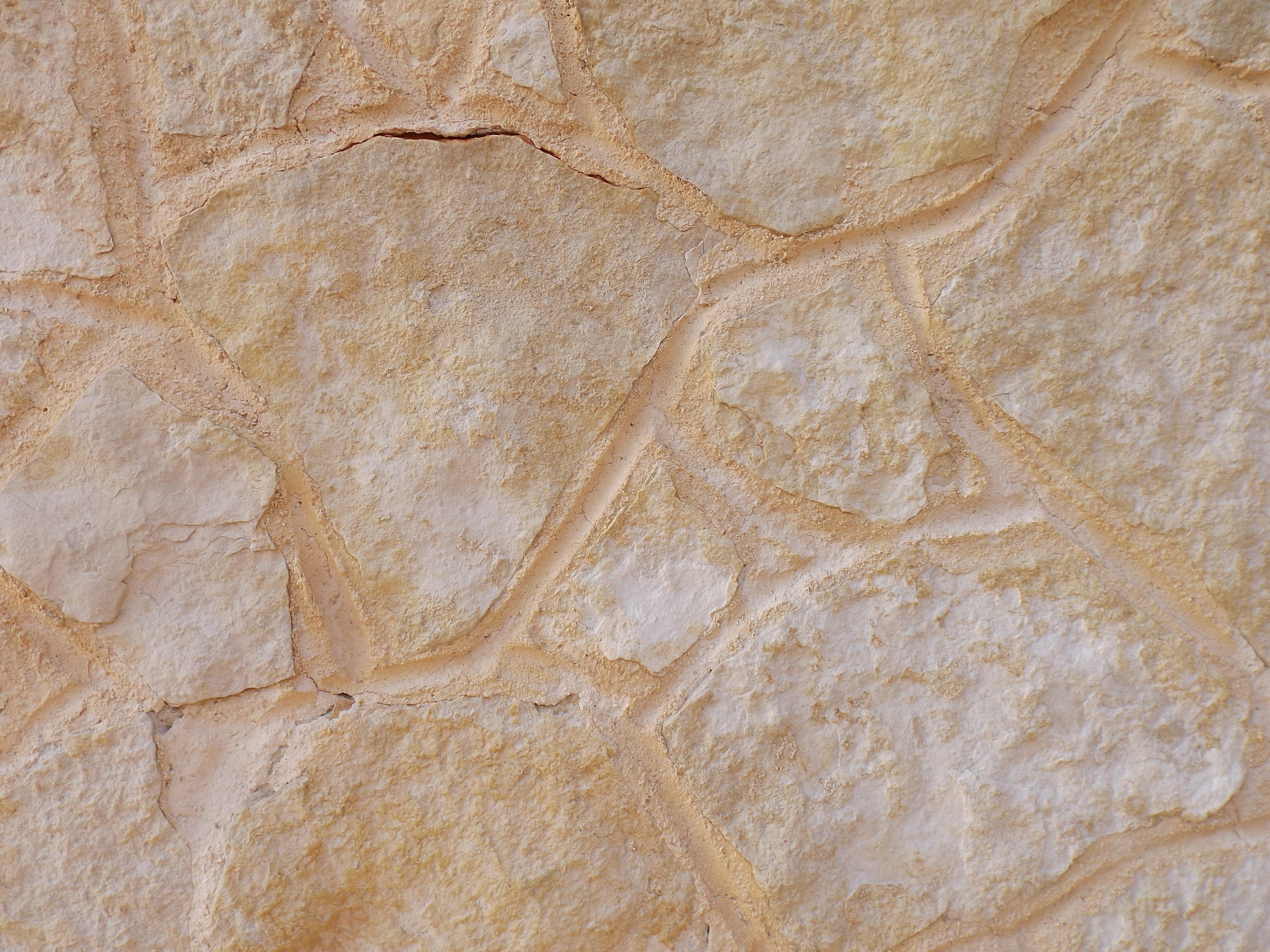 Fotos Gratis Naturaleza Rock Textura Piso Piedra