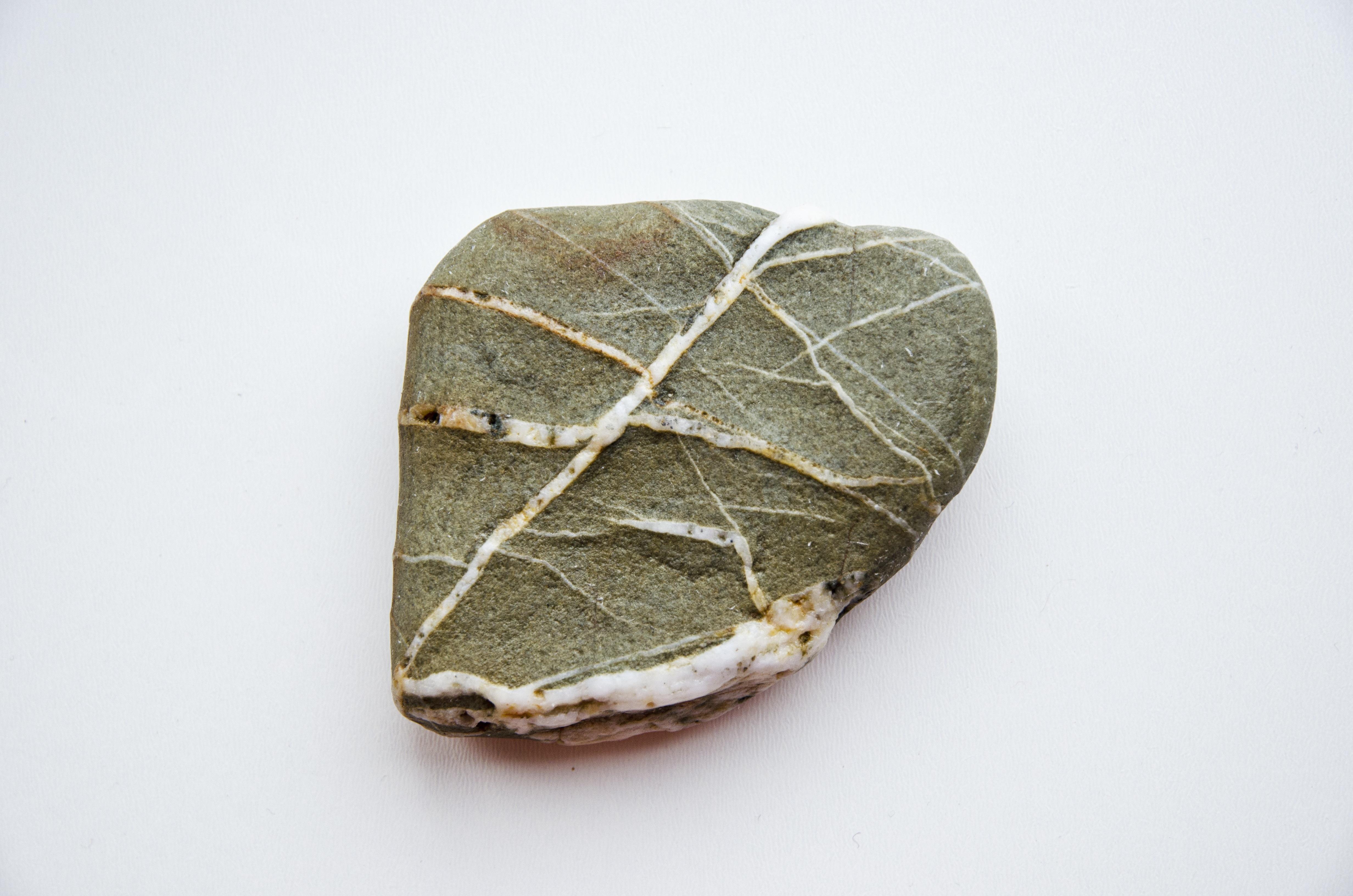 Kostenlose foto : Natur, Rock, Holz, Textur, Blatt, Blume, isoliert ...