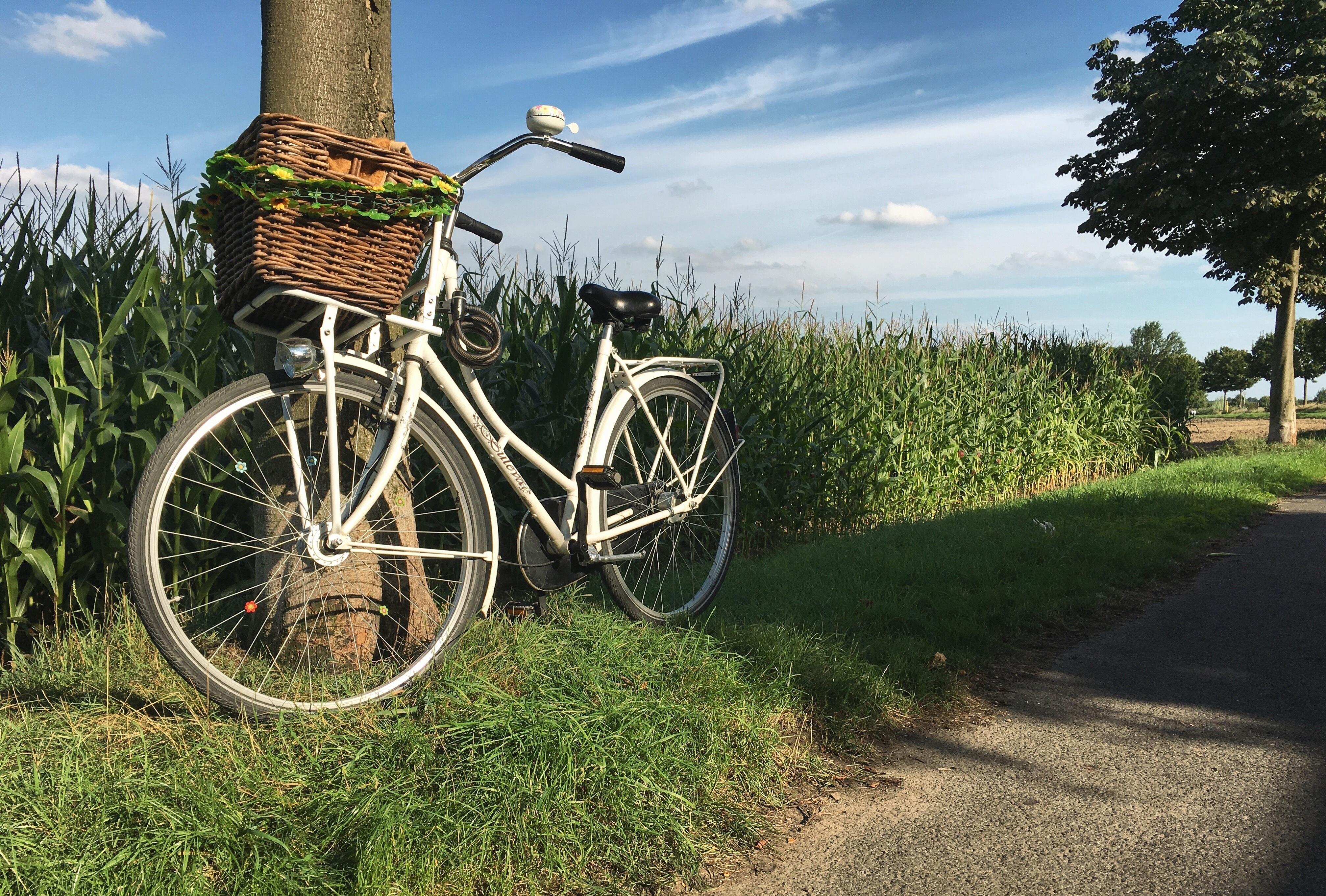 Kostenlose foto  Natur Himmel Feld Rad Luft Fahrrad Land