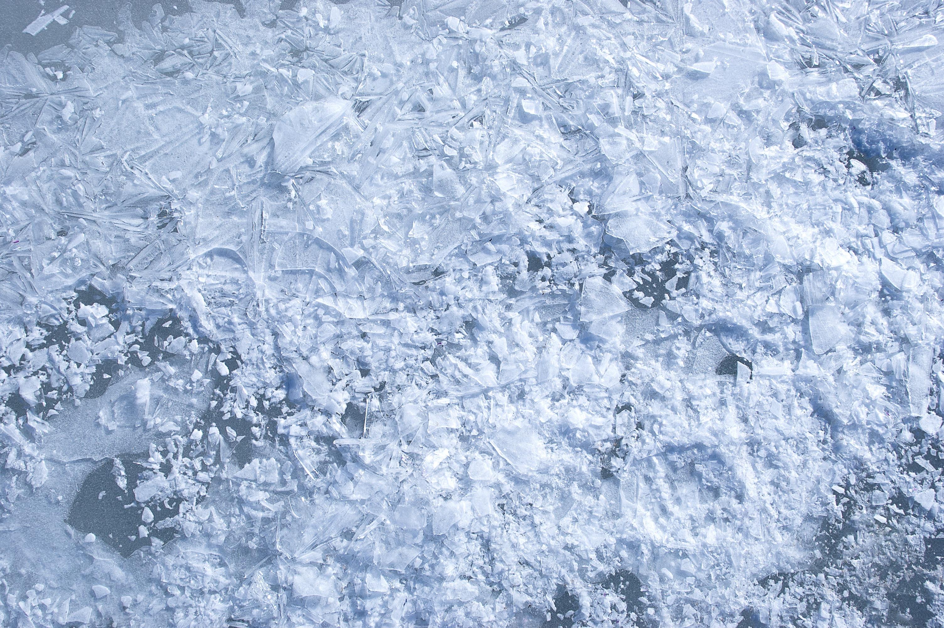 Kostenlose Foto Natur Schnee Kalt Winter Licht