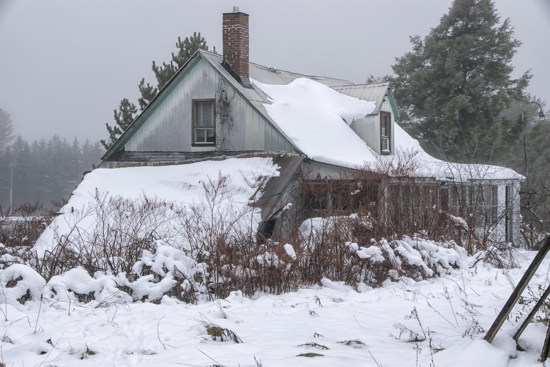Images Gratuites : la nature, neige, hiver, la glace, Météo, saison ...
