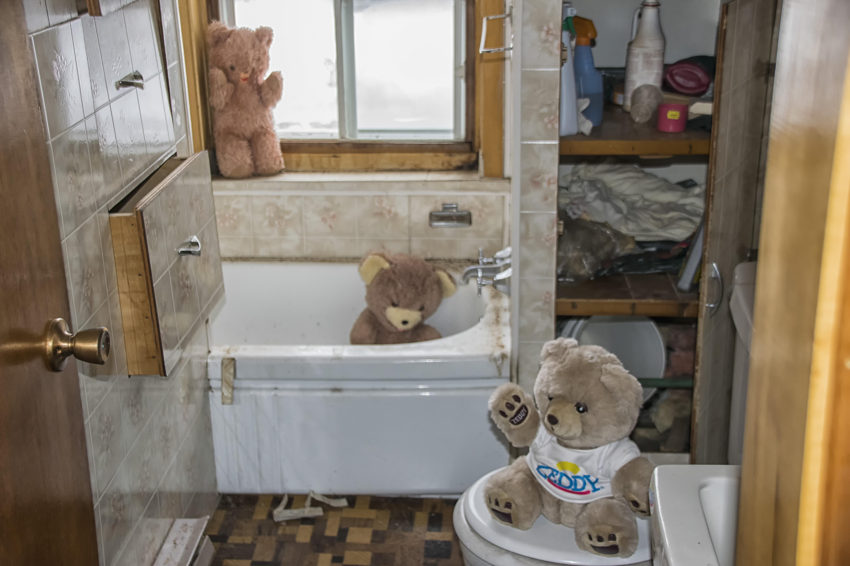 Tapis Salle De Bain Action ~ images gratuites la nature bois maison chat chalet chambre