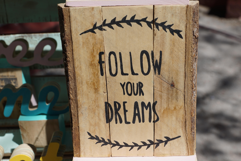 alam kayu daun tanda catatan mimpi melindungi huruf bijaksana meninggalkan pepatah percaya mengikuti kebijaksanaan ibiza pasar