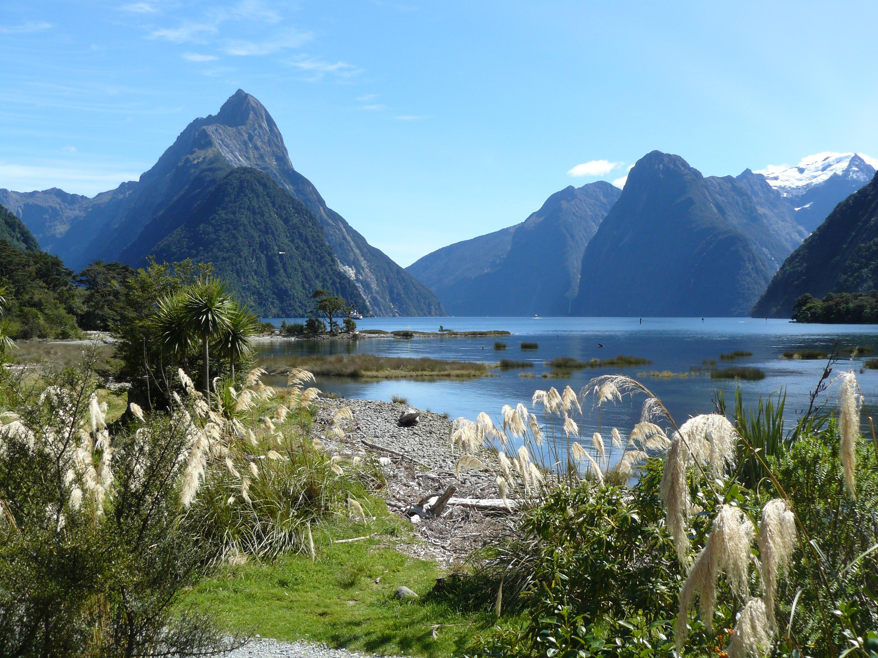 δωρεάν εφαρμογές της Νέας Ζηλανδίας ανθρωποκυνηγητό