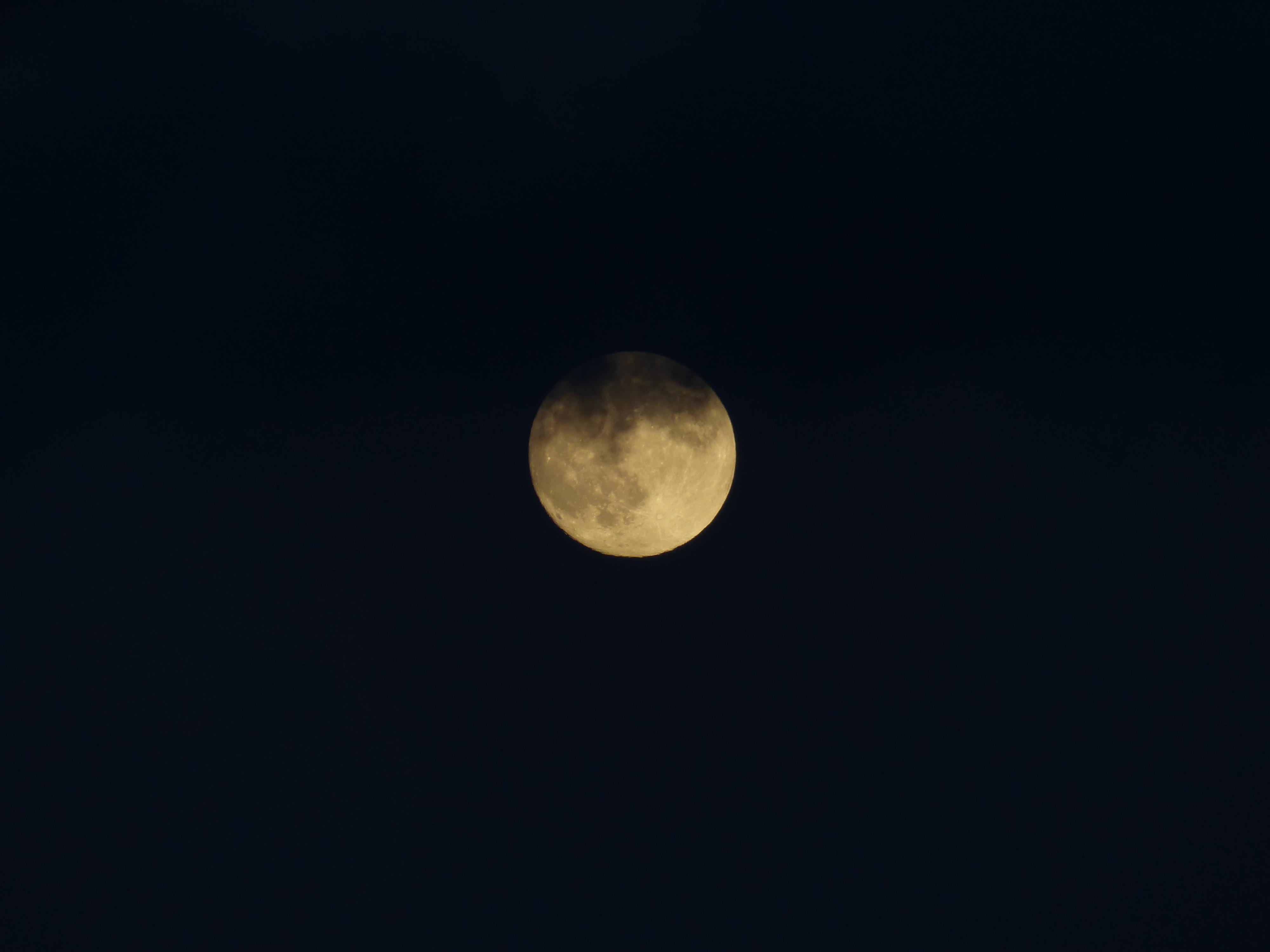 Exceptionnel Images Gratuites : nuit, atmosphère, mystique, obscurité, pleine  RQ63