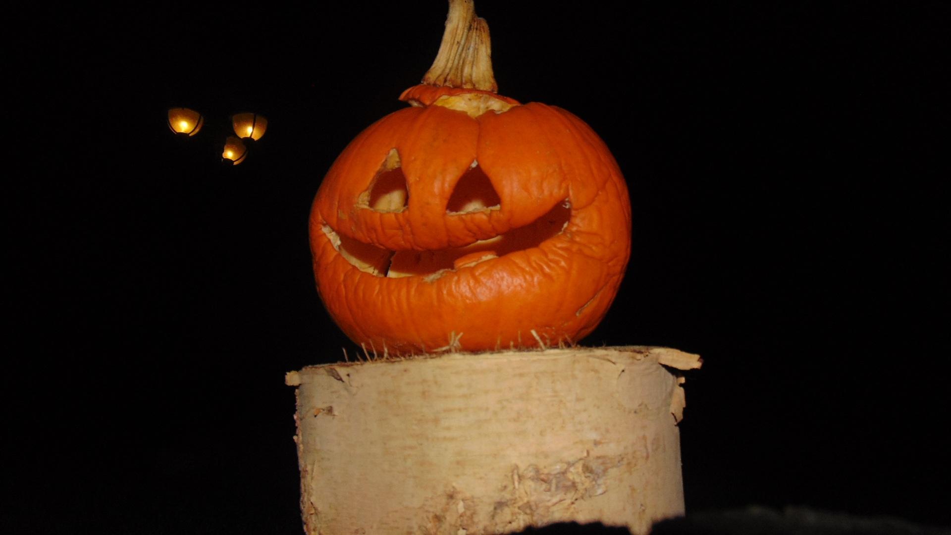 Halloween Decoratie Buiten.Gratis Afbeeldingen Nacht Decoratie Produceren Vakantie