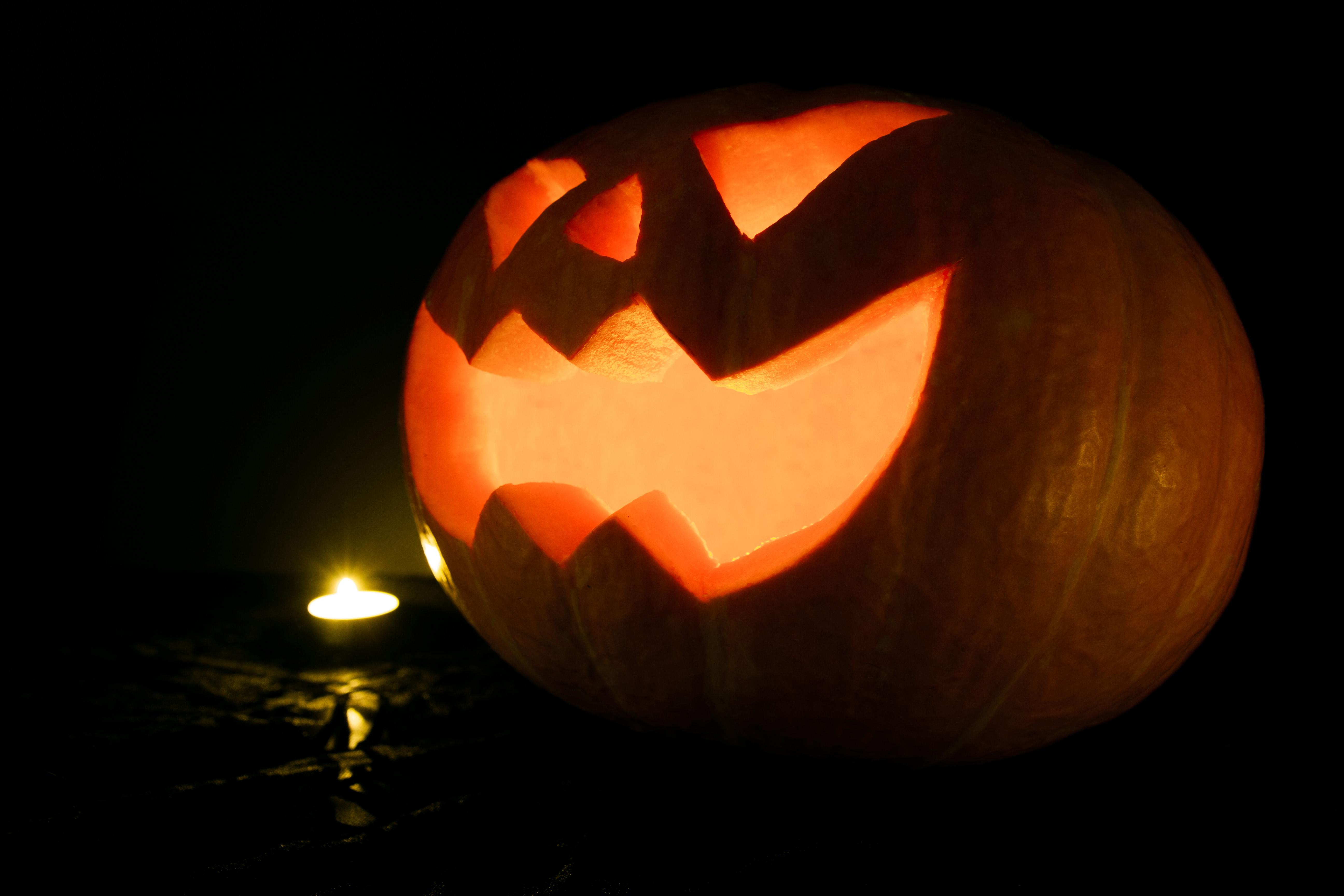 Night Fall Spooky Orange Produce Autumn Pumpkin Halloween Holiday Jack O  Lantern Scary Candles Holidays Seasonal