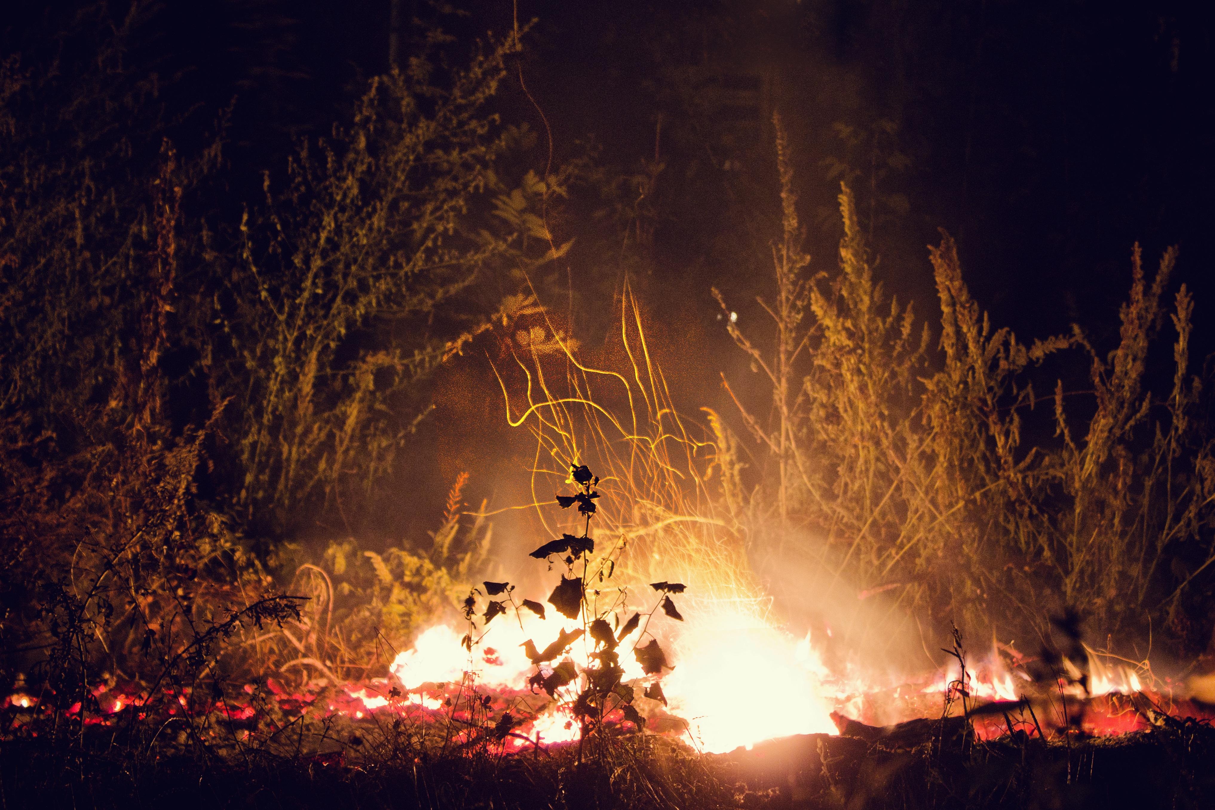 картинки огня ночью